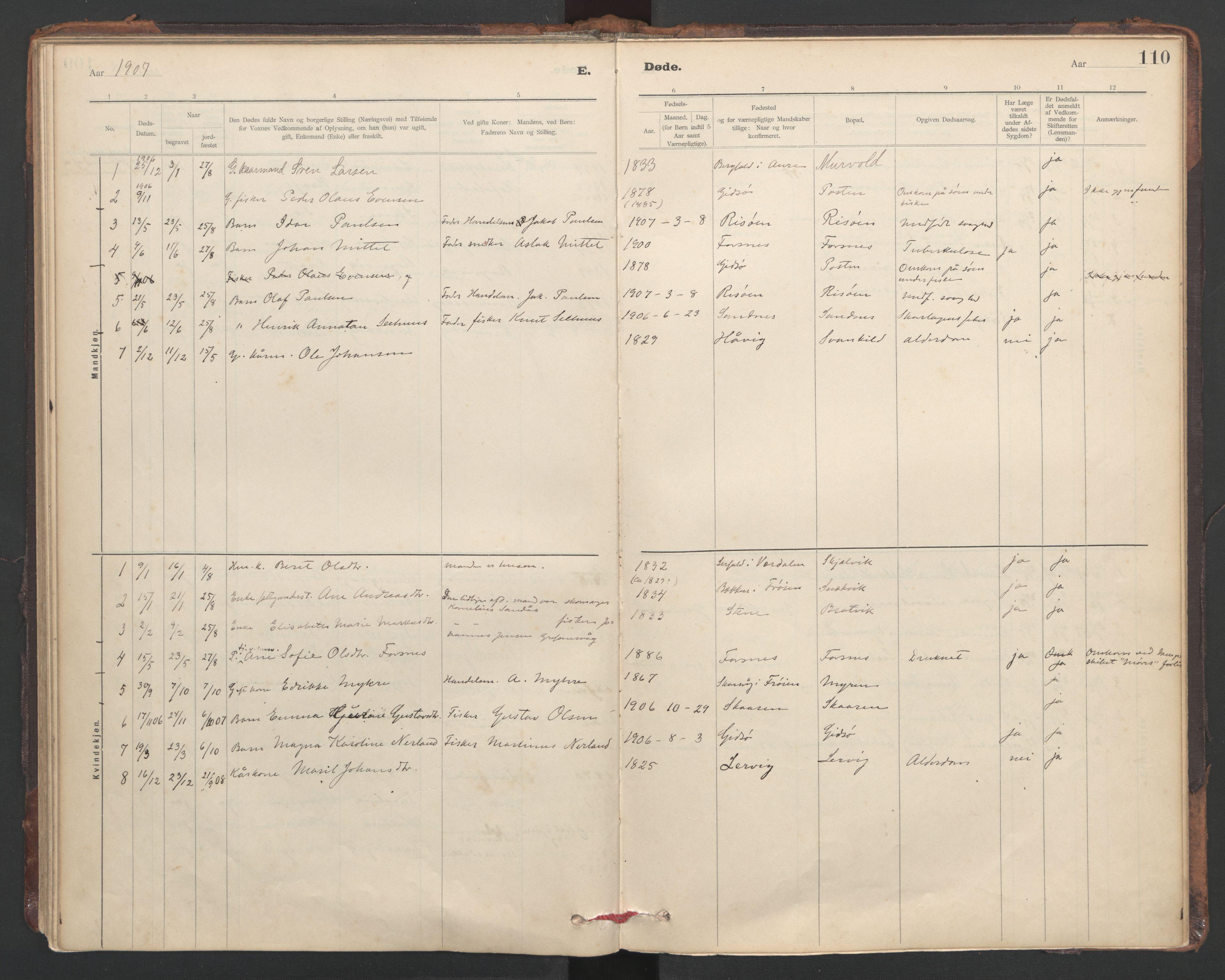 SAT, Ministerialprotokoller, klokkerbøker og fødselsregistre - Sør-Trøndelag, 635/L0552: Ministerialbok nr. 635A02, 1899-1919, s. 110