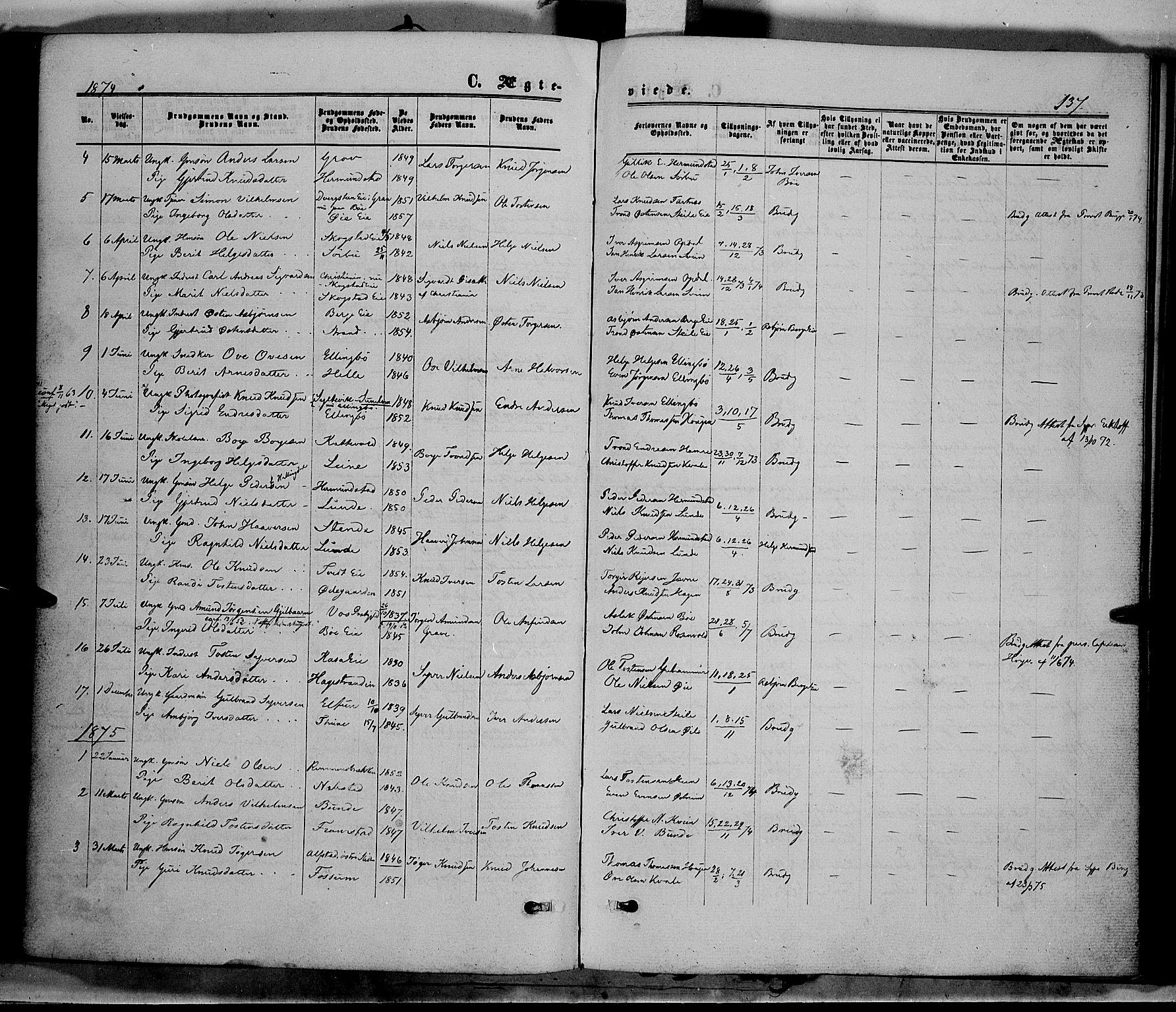 SAH, Vang prestekontor, Valdres, Ministerialbok nr. 7, 1865-1881, s. 137