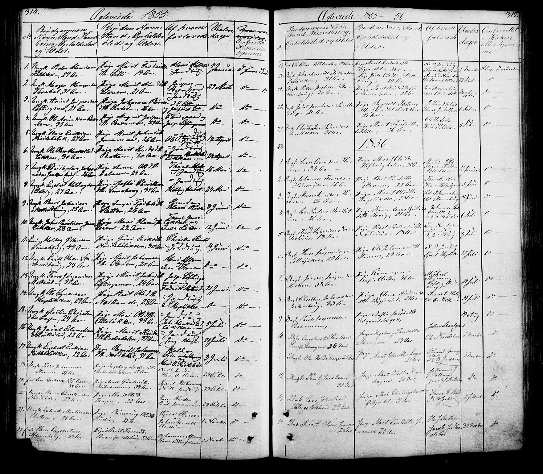 SAH, Lesja prestekontor, Klokkerbok nr. 5, 1850-1894, s. 314-315