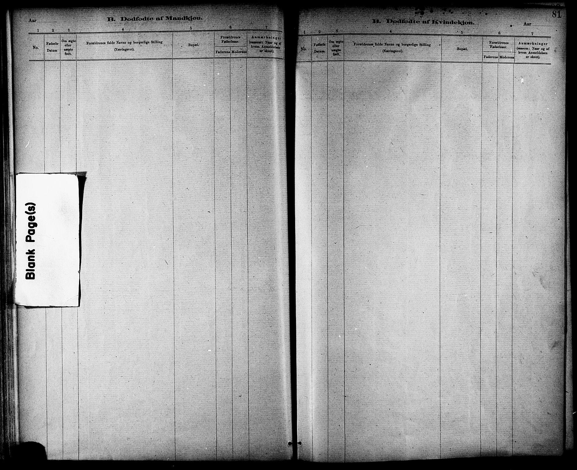 SAT, Ministerialprotokoller, klokkerbøker og fødselsregistre - Nord-Trøndelag, 703/L0030: Ministerialbok nr. 703A03, 1880-1892, s. 81