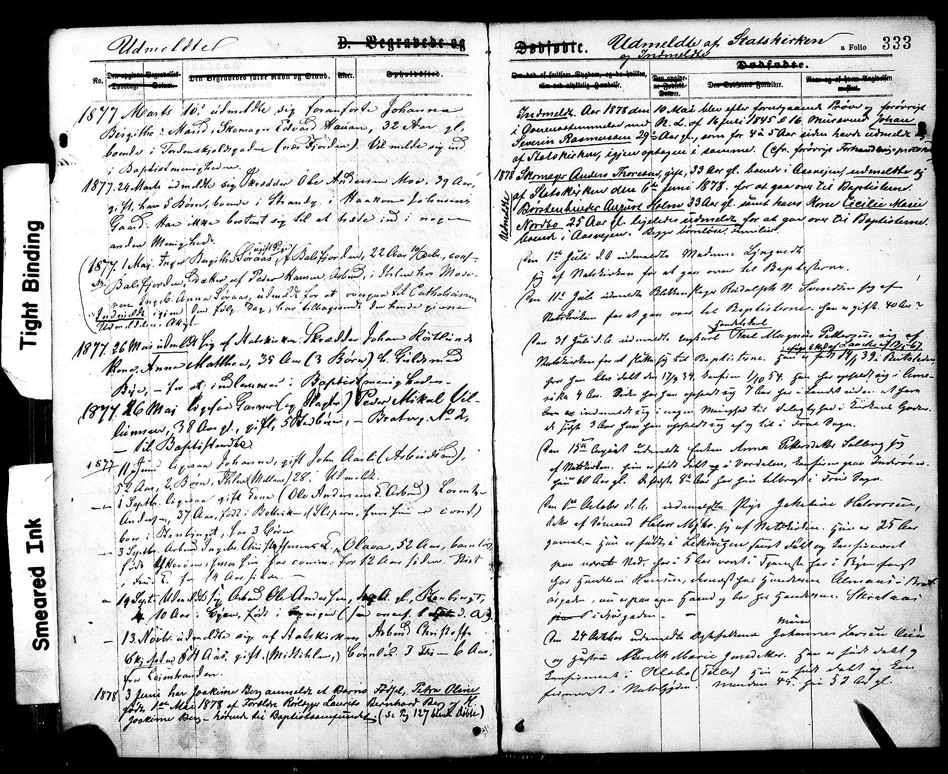 SAT, Ministerialprotokoller, klokkerbøker og fødselsregistre - Sør-Trøndelag, 602/L0118: Ministerialbok nr. 602A16, 1873-1879, s. 333