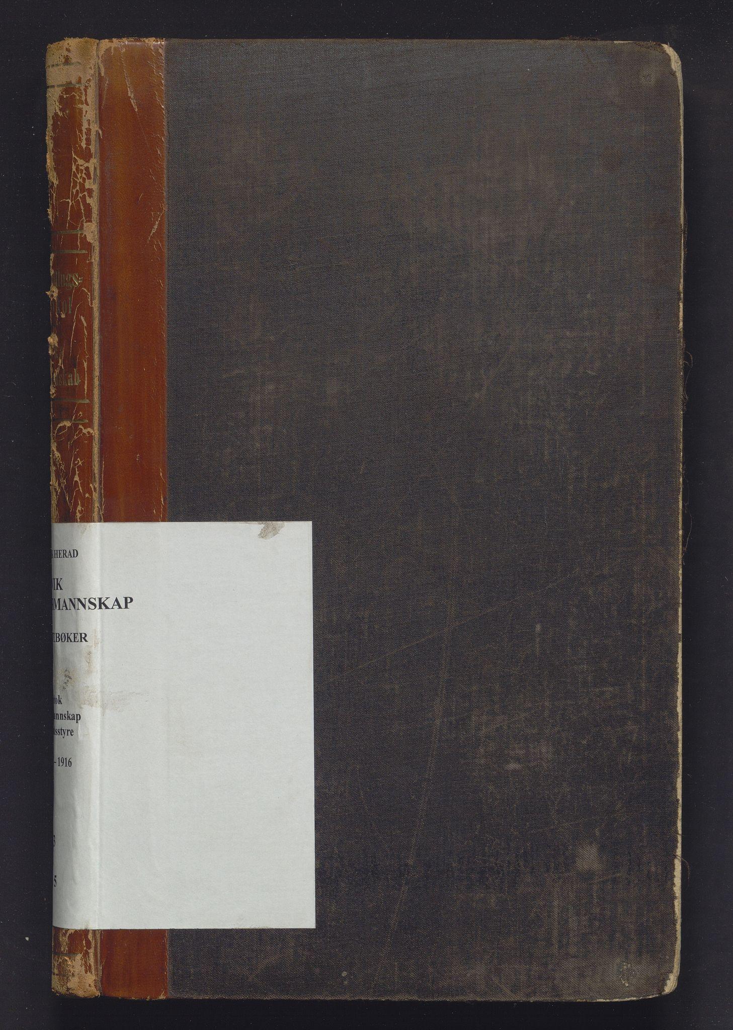 IKAH, Ulvik herad. Formannskapet, A/Aa/Aaa/L0005: Møtebok for formannskap og heradsstyre, 1907-1916