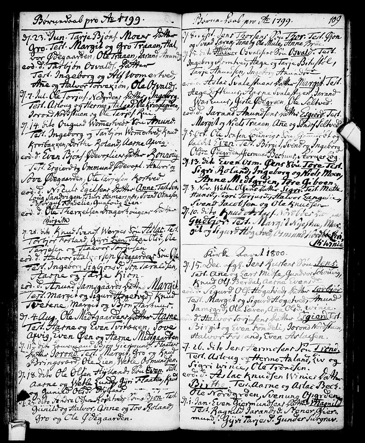 SAKO, Vinje kirkebøker, F/Fa/L0002: Ministerialbok nr. I 2, 1767-1814, s. 109