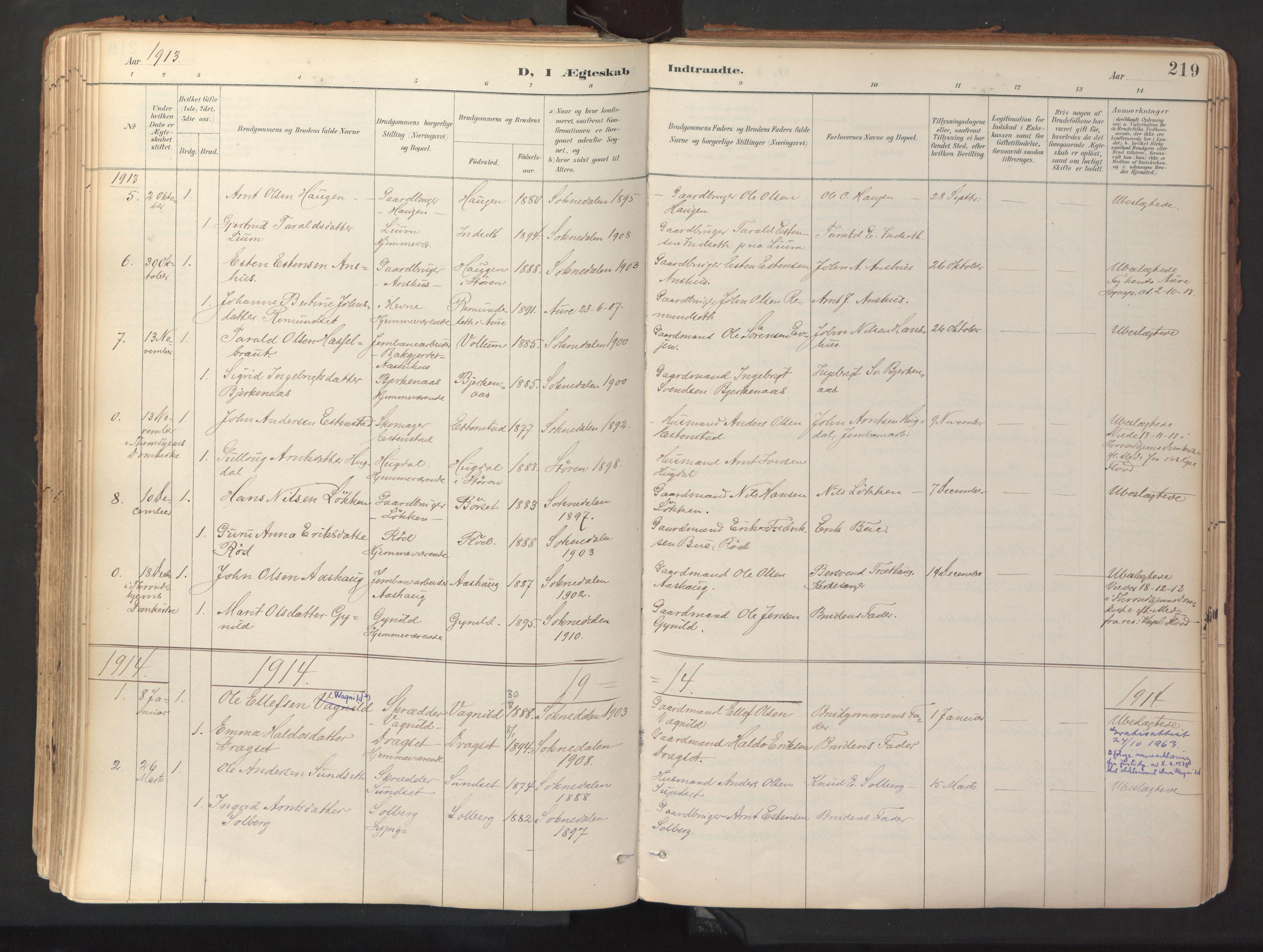 SAT, Ministerialprotokoller, klokkerbøker og fødselsregistre - Sør-Trøndelag, 689/L1041: Ministerialbok nr. 689A06, 1891-1923, s. 219