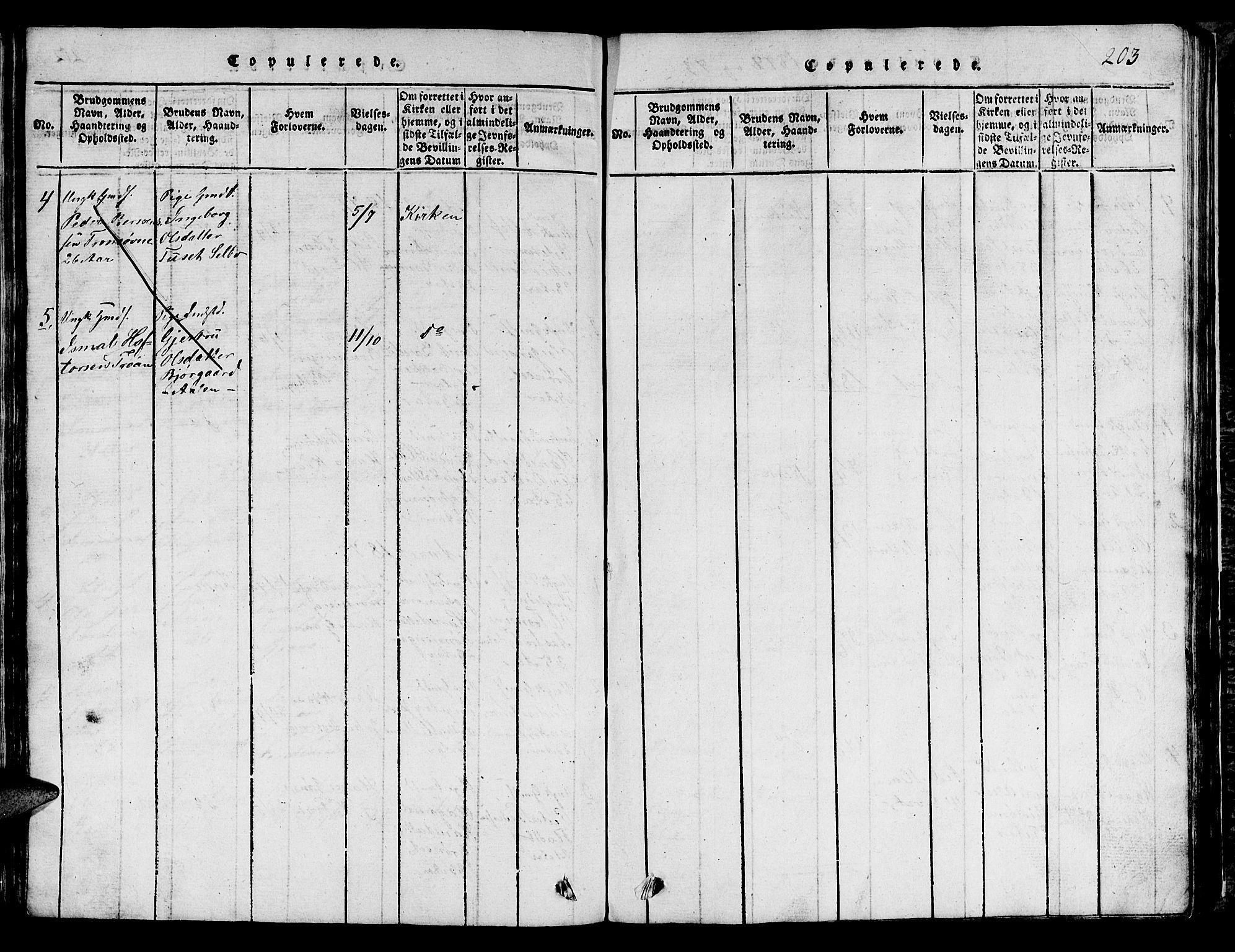 SAT, Ministerialprotokoller, klokkerbøker og fødselsregistre - Sør-Trøndelag, 685/L0976: Klokkerbok nr. 685C01, 1817-1878, s. 203