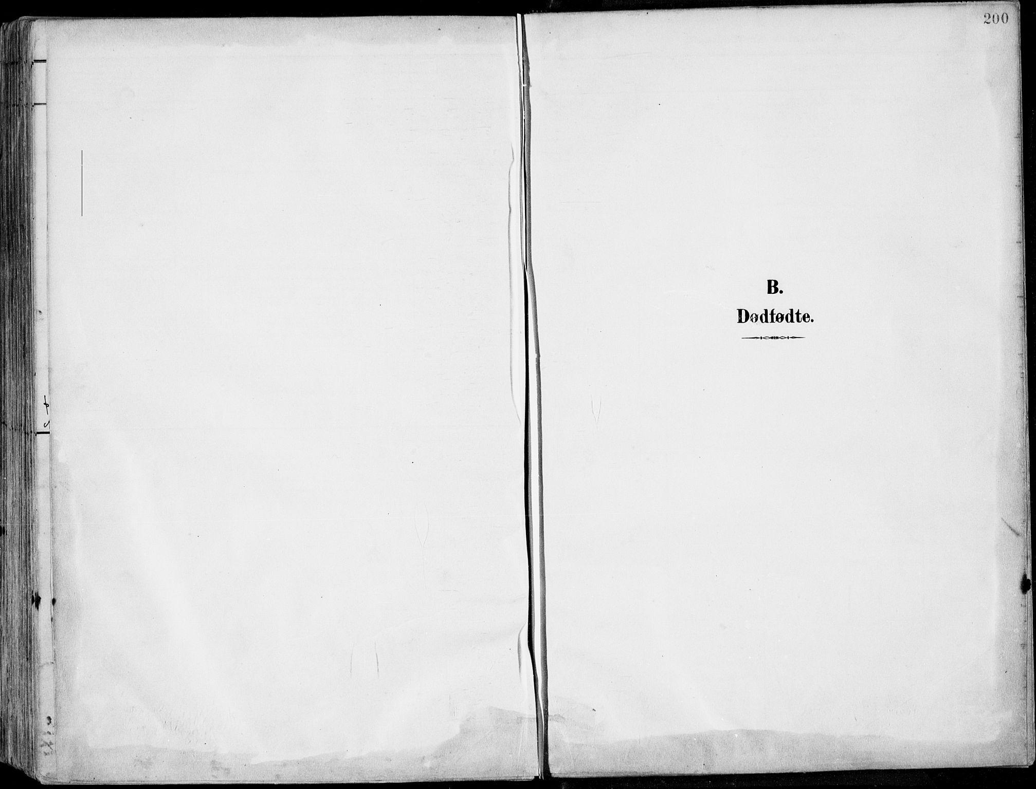 SAKO, Porsgrunn kirkebøker , F/Fa/L0010: Ministerialbok nr. 10, 1895-1919, s. 200