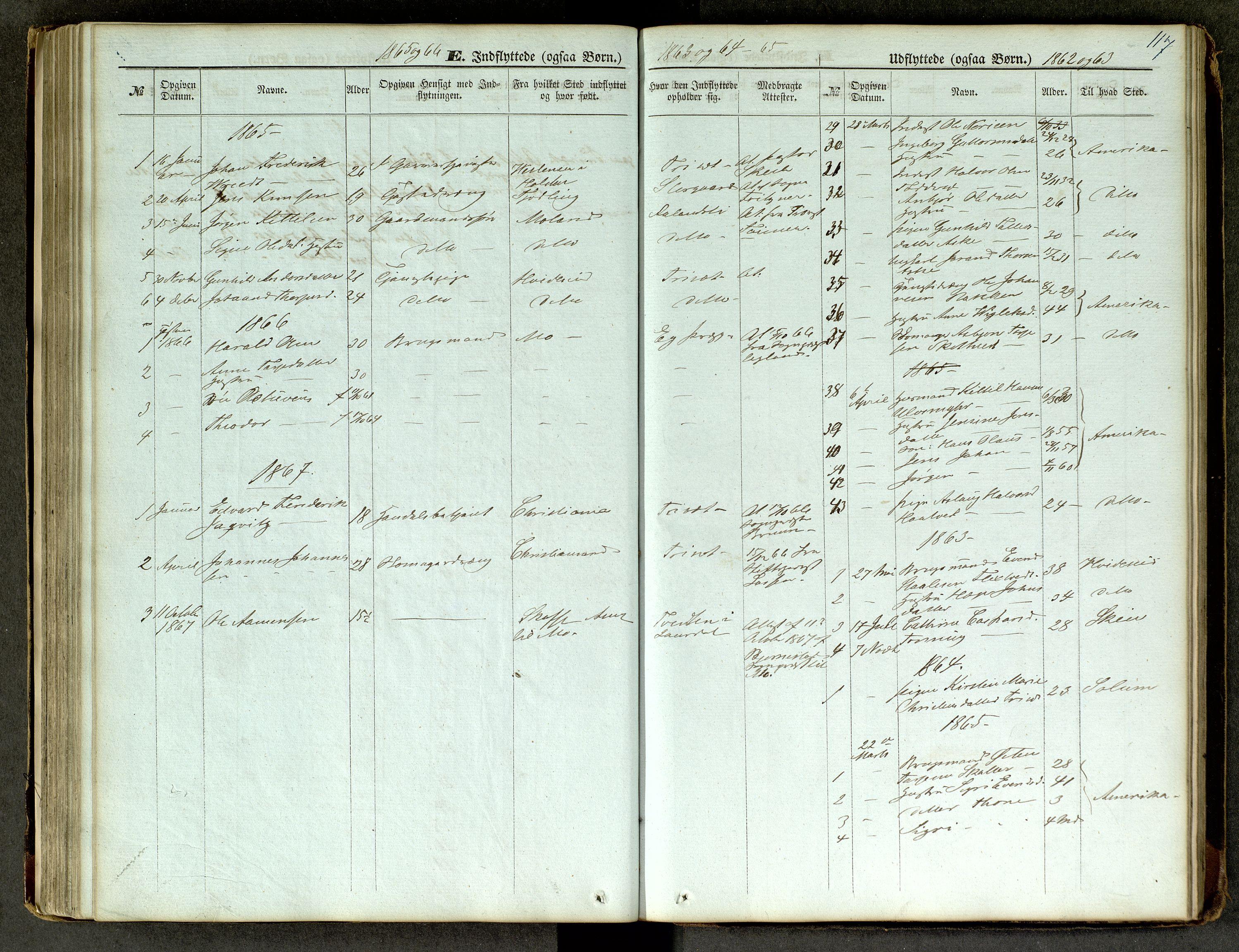 SAKO, Lårdal kirkebøker, G/Ga/L0002: Klokkerbok nr. I 2, 1861-1890, s. 117
