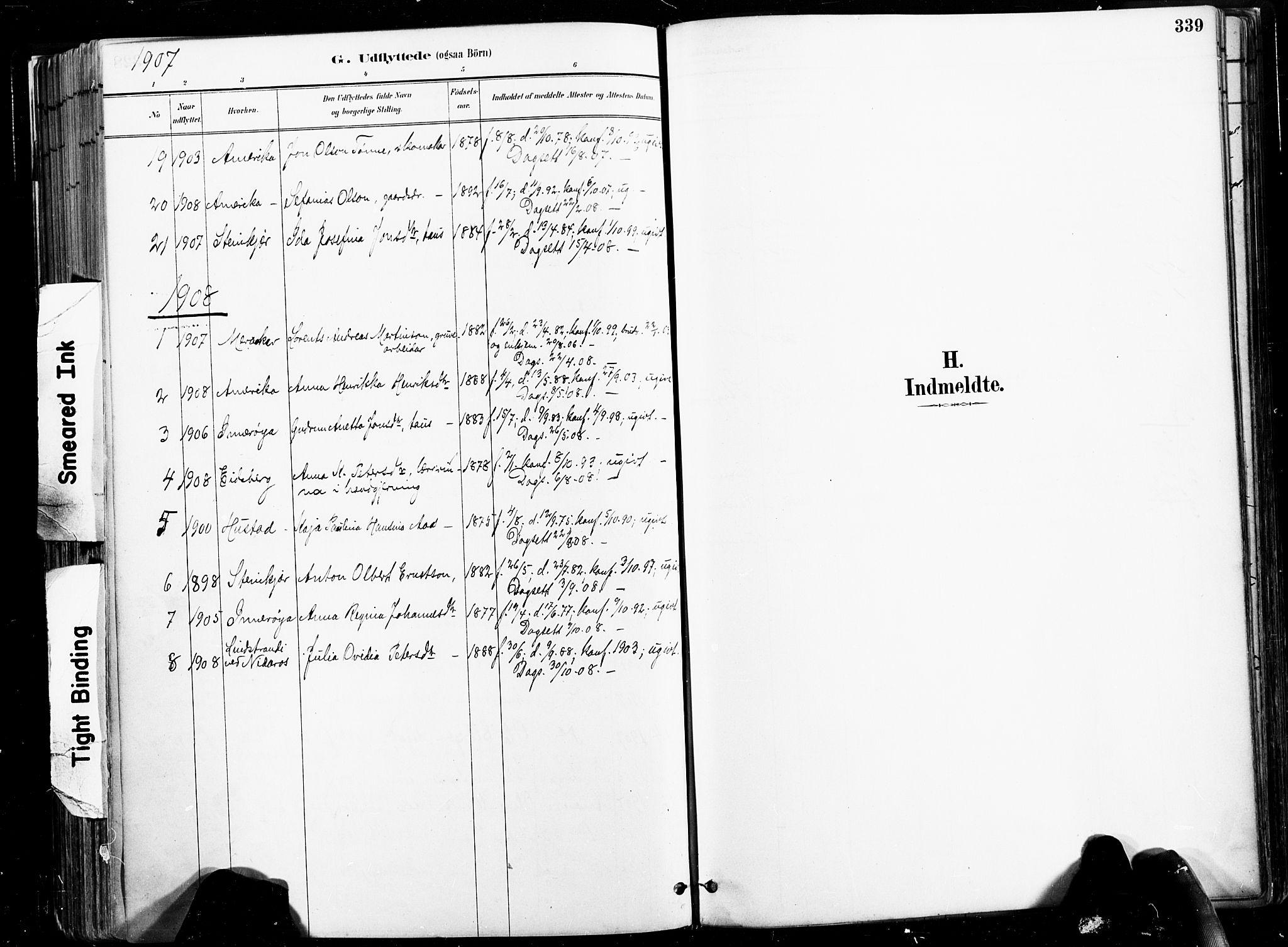 SAT, Ministerialprotokoller, klokkerbøker og fødselsregistre - Nord-Trøndelag, 735/L0351: Ministerialbok nr. 735A10, 1884-1908, s. 339