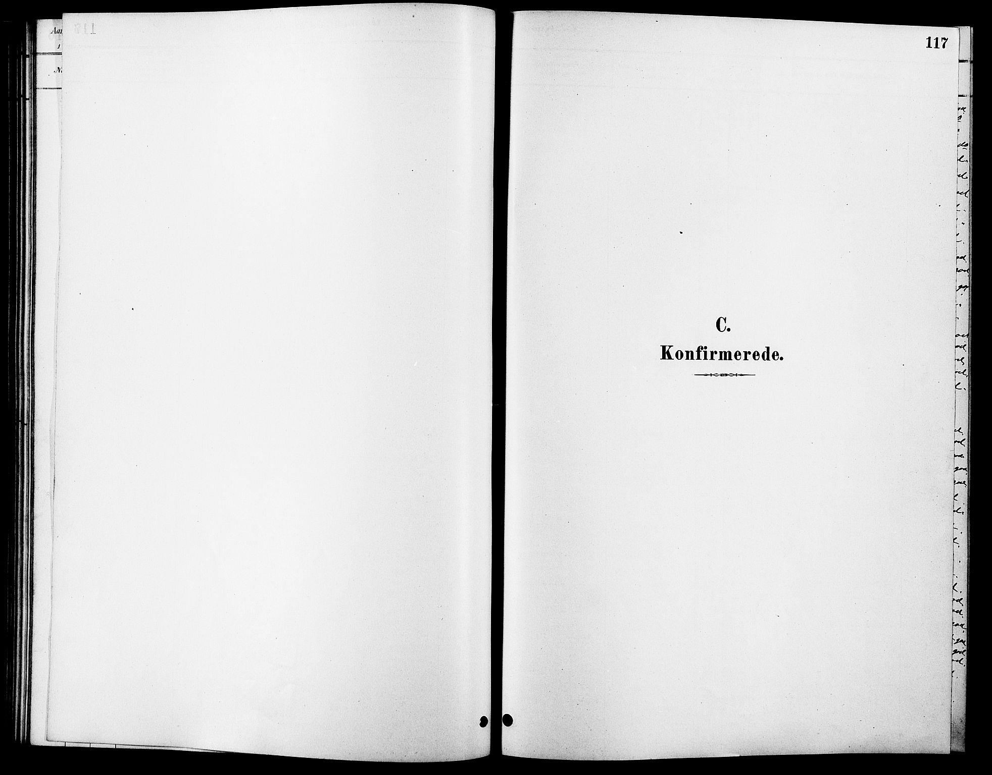 SAH, Rendalen prestekontor, H/Ha/Hab/L0003: Klokkerbok nr. 3, 1879-1904, s. 117