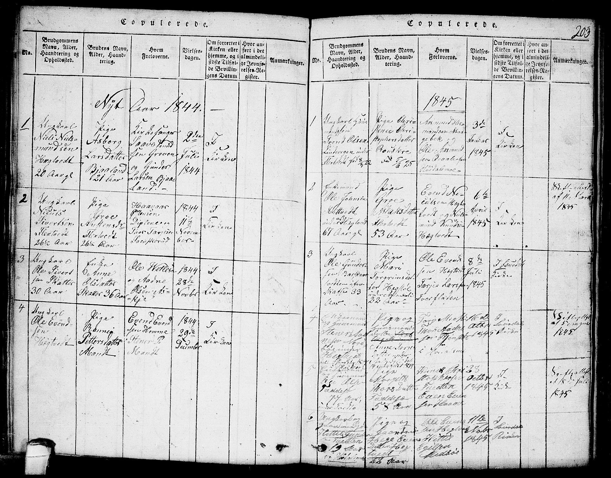 SAKO, Lårdal kirkebøker, G/Ga/L0001: Klokkerbok nr. I 1, 1815-1861, s. 203