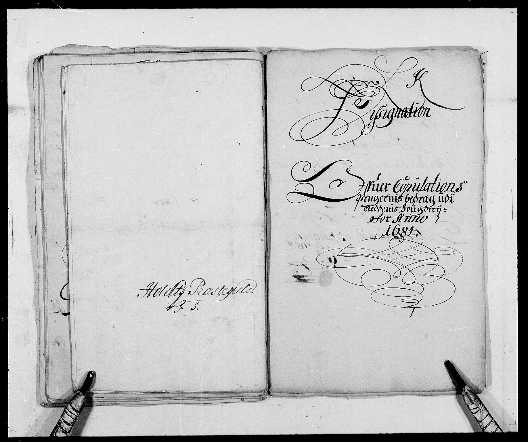RA, Rentekammeret inntil 1814, Reviderte regnskaper, Fogderegnskap, R39/L2308: Fogderegnskap Nedenes, 1684-1689, s. 133