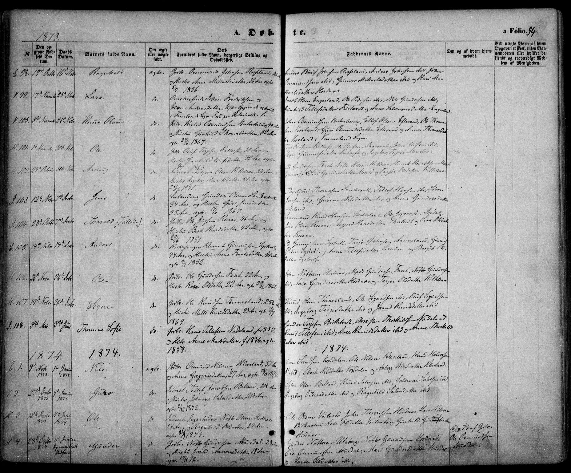SAK, Evje sokneprestkontor, F/Fa/Faa/L0006: Ministerialbok nr. A 6, 1866-1884, s. 54