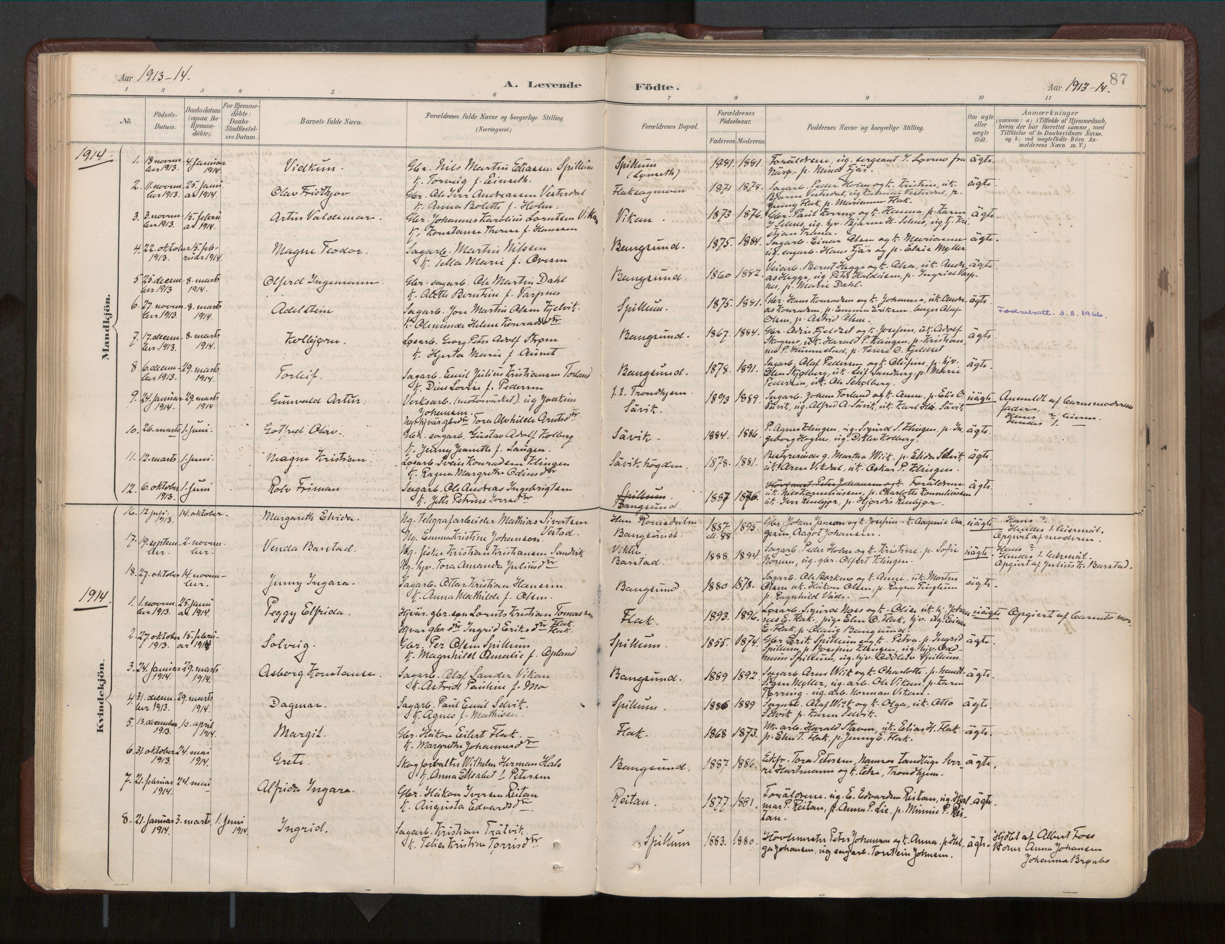SAT, Ministerialprotokoller, klokkerbøker og fødselsregistre - Nord-Trøndelag, 770/L0589: Ministerialbok nr. 770A03, 1887-1929, s. 87