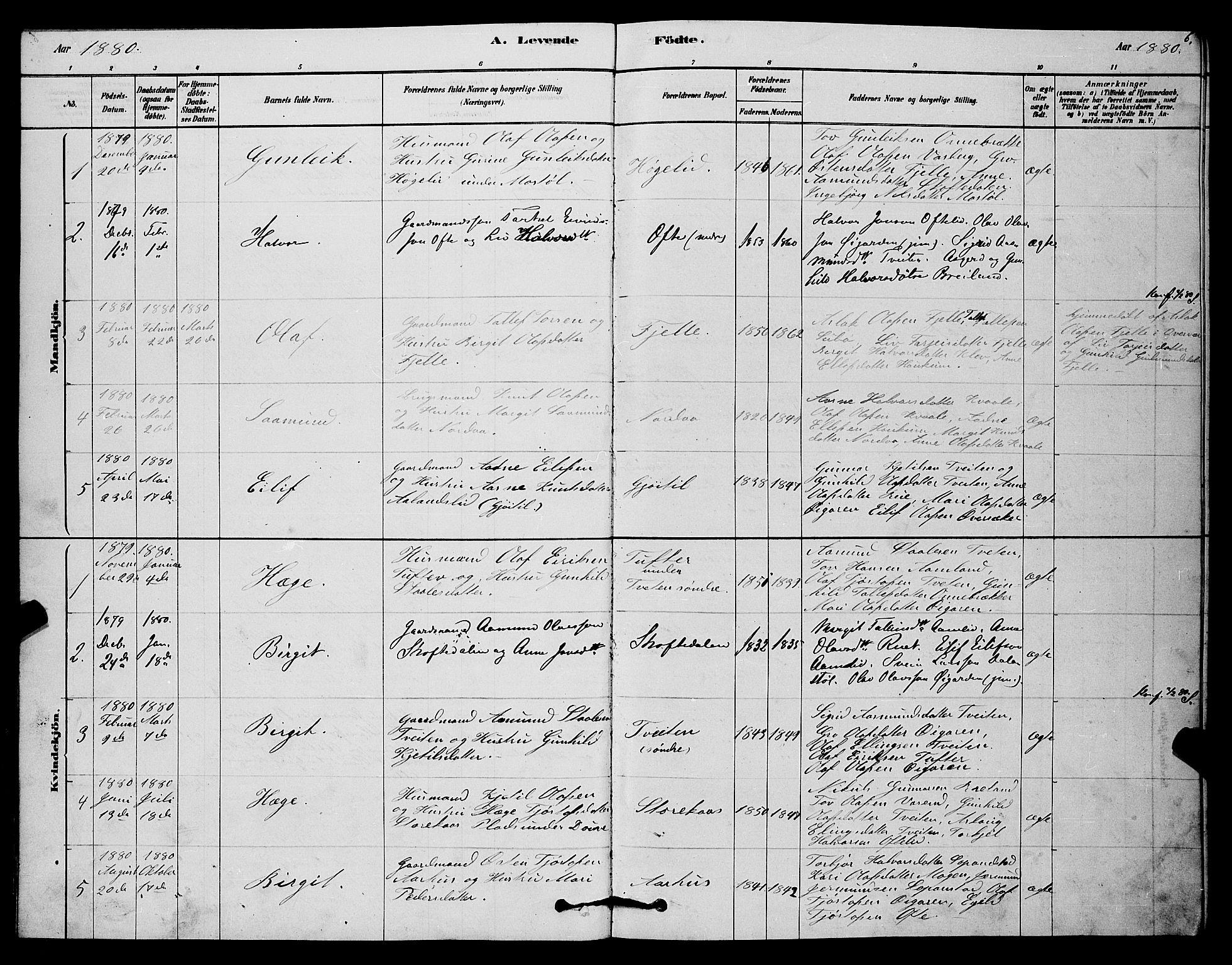 SAKO, Lårdal kirkebøker, G/Gc/L0003: Klokkerbok nr. III 3, 1878-1890, s. 6