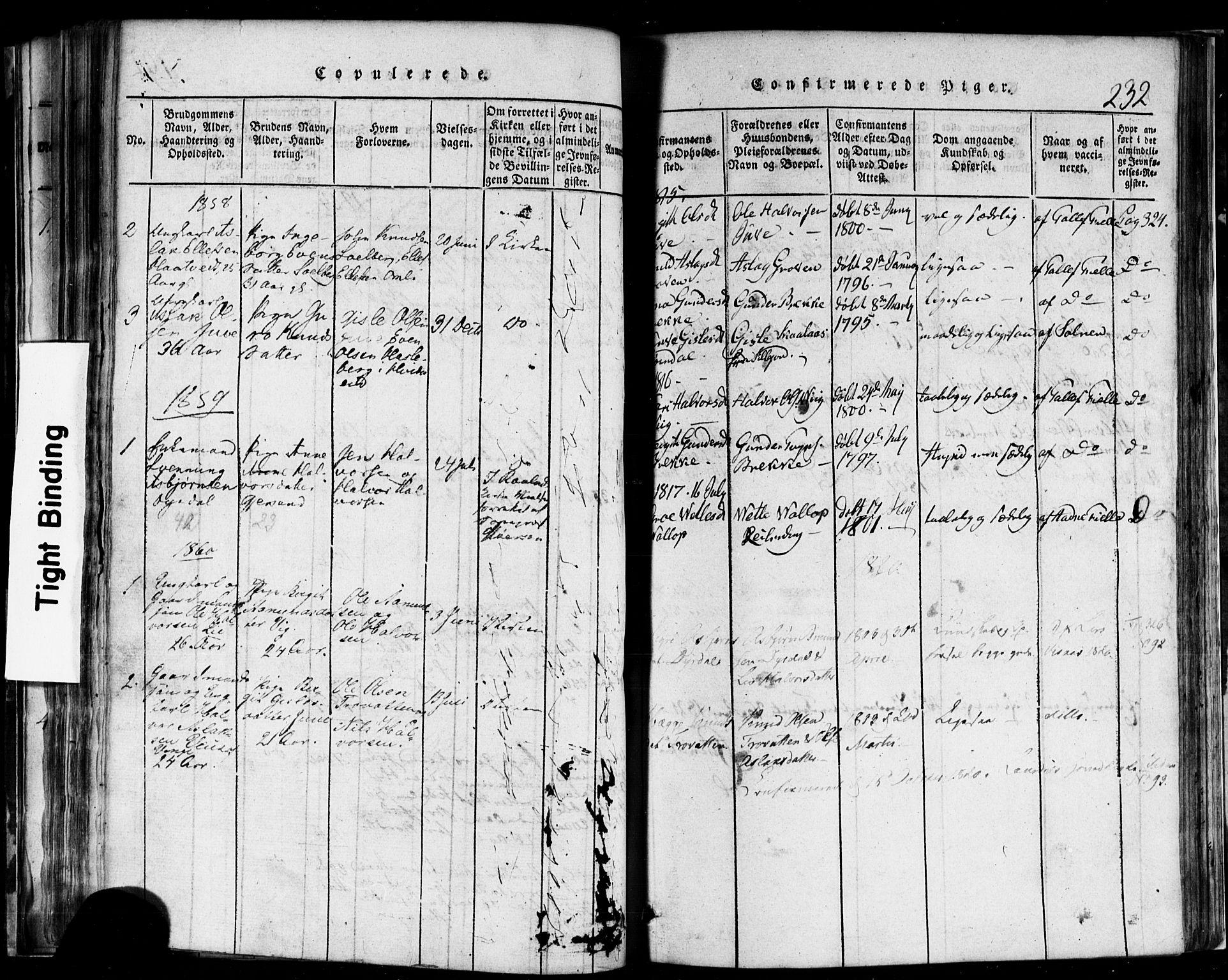 SAKO, Rauland kirkebøker, F/Fa/L0002: Ministerialbok nr. 2, 1815-1860, s. 232