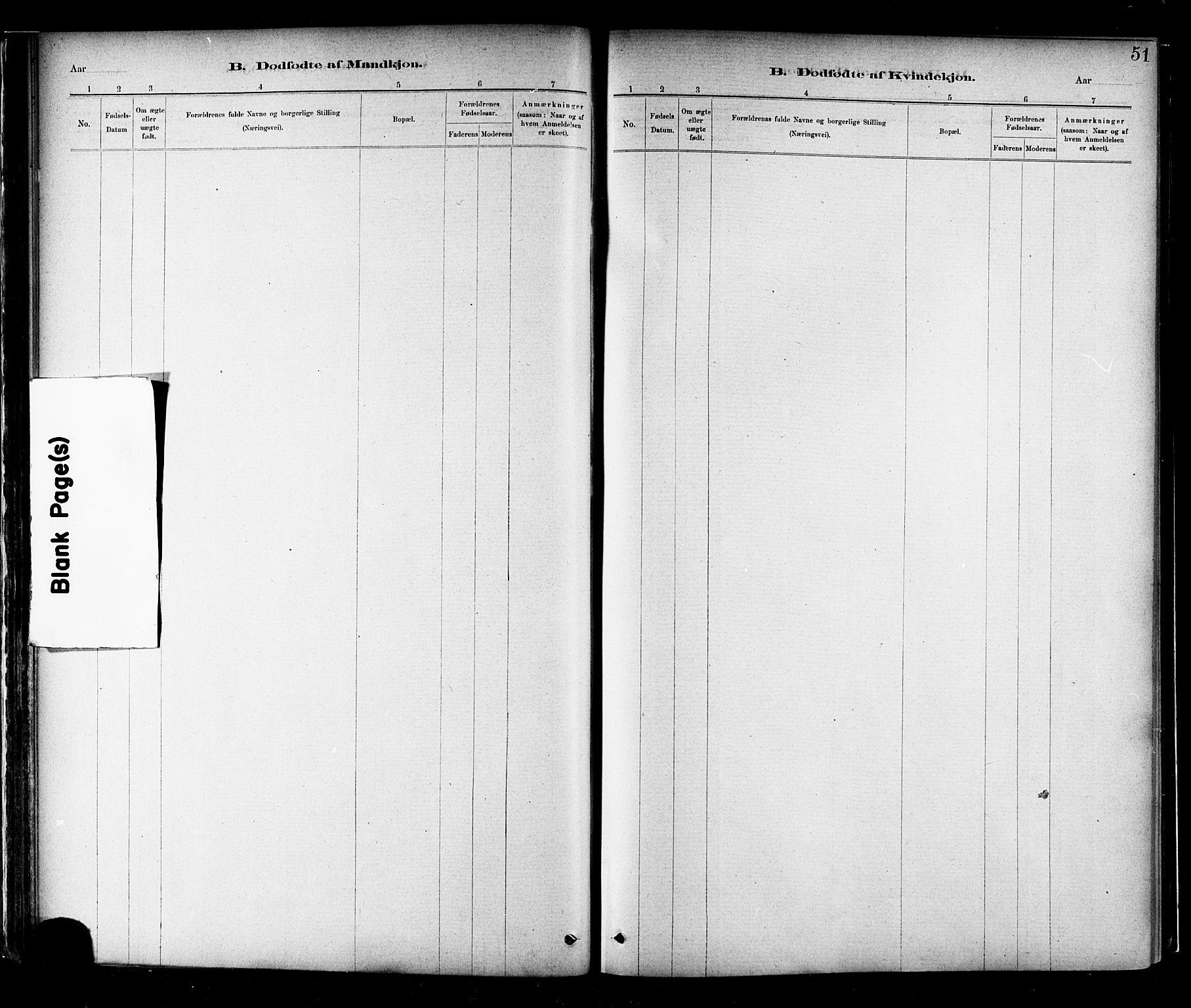 SAT, Ministerialprotokoller, klokkerbøker og fødselsregistre - Nord-Trøndelag, 706/L0047: Ministerialbok nr. 706A03, 1878-1892, s. 51