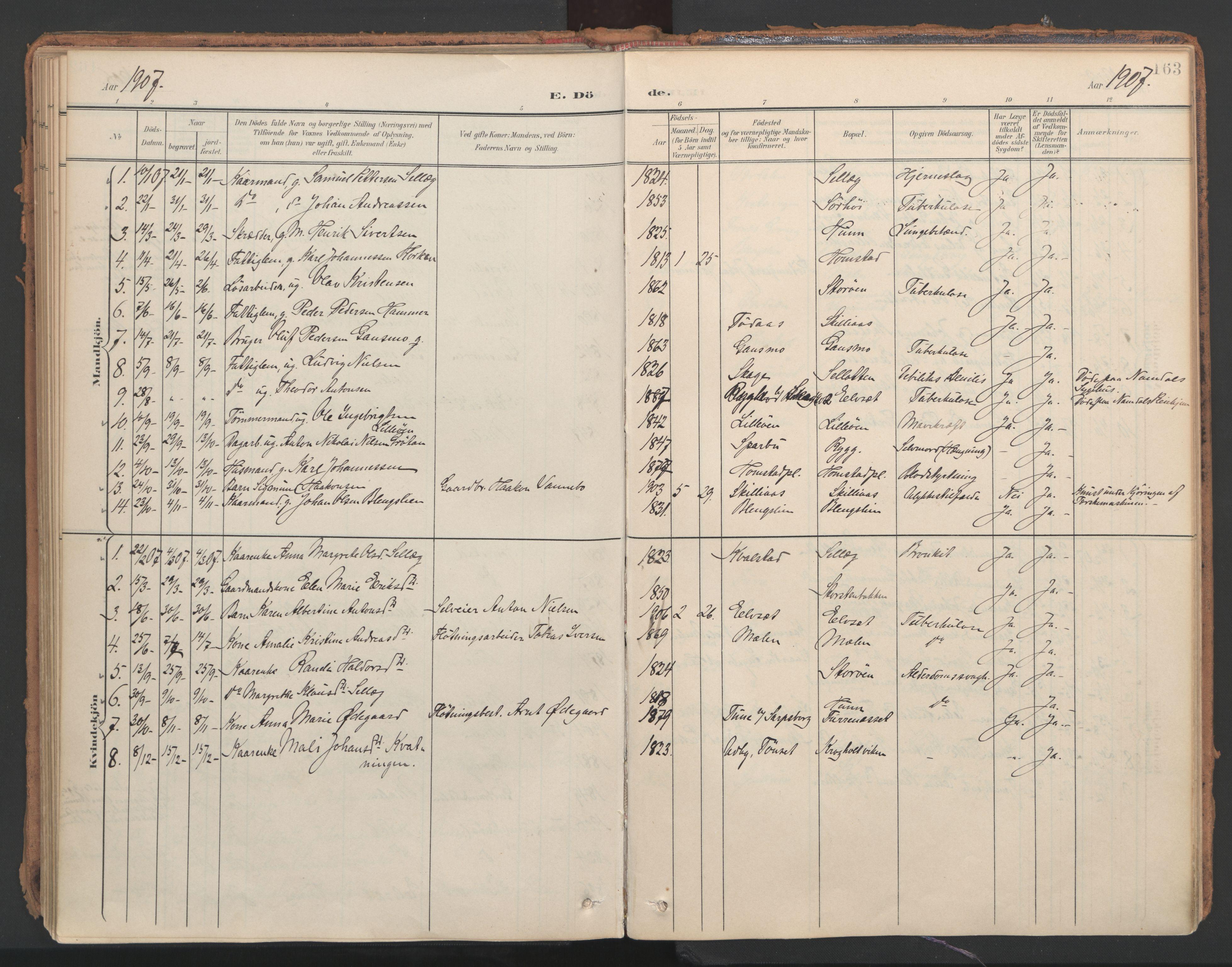 SAT, Ministerialprotokoller, klokkerbøker og fødselsregistre - Nord-Trøndelag, 766/L0564: Ministerialbok nr. 767A02, 1900-1932, s. 163