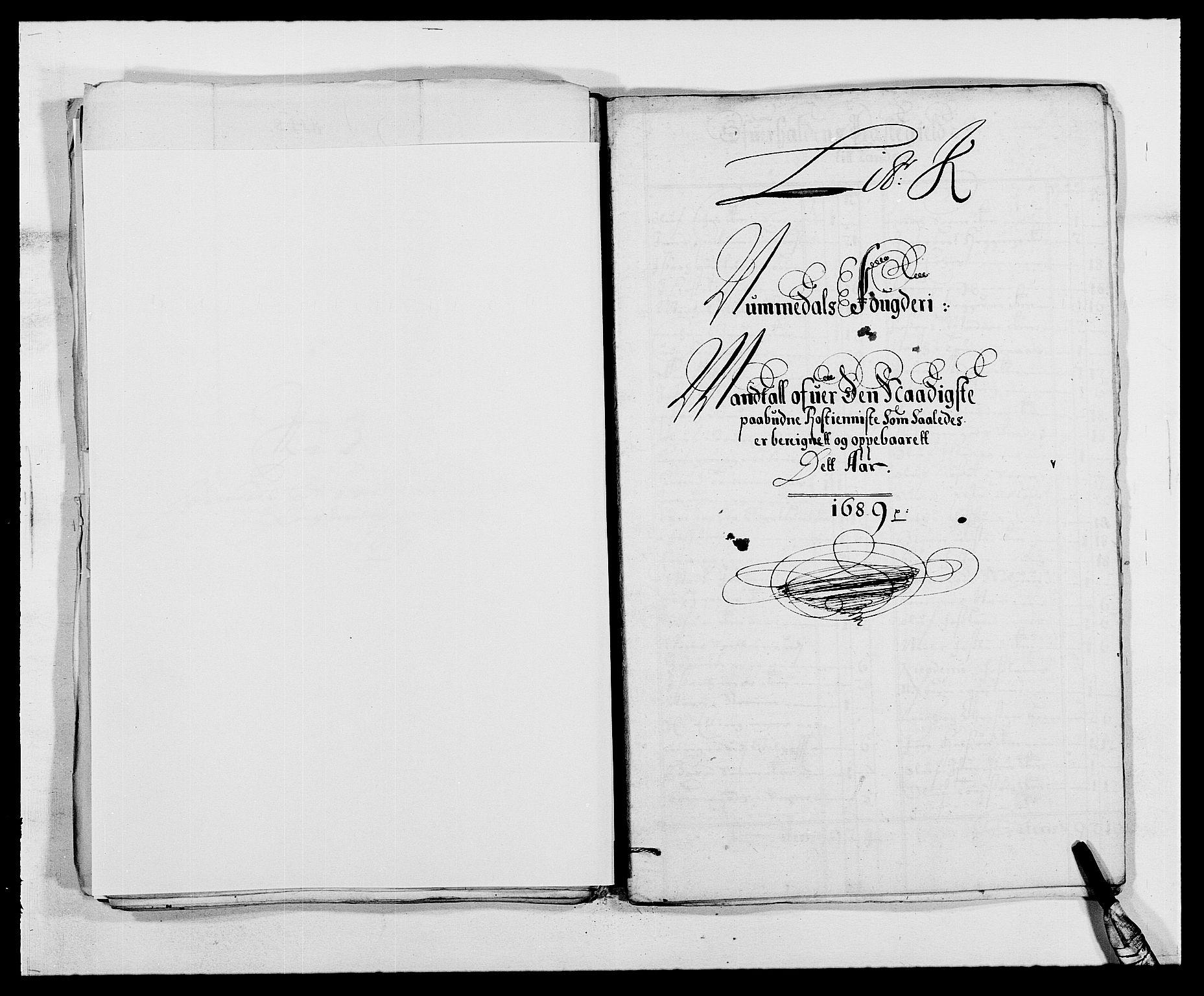 RA, Rentekammeret inntil 1814, Reviderte regnskaper, Fogderegnskap, R64/L4422: Fogderegnskap Namdal, 1687-1689, s. 249