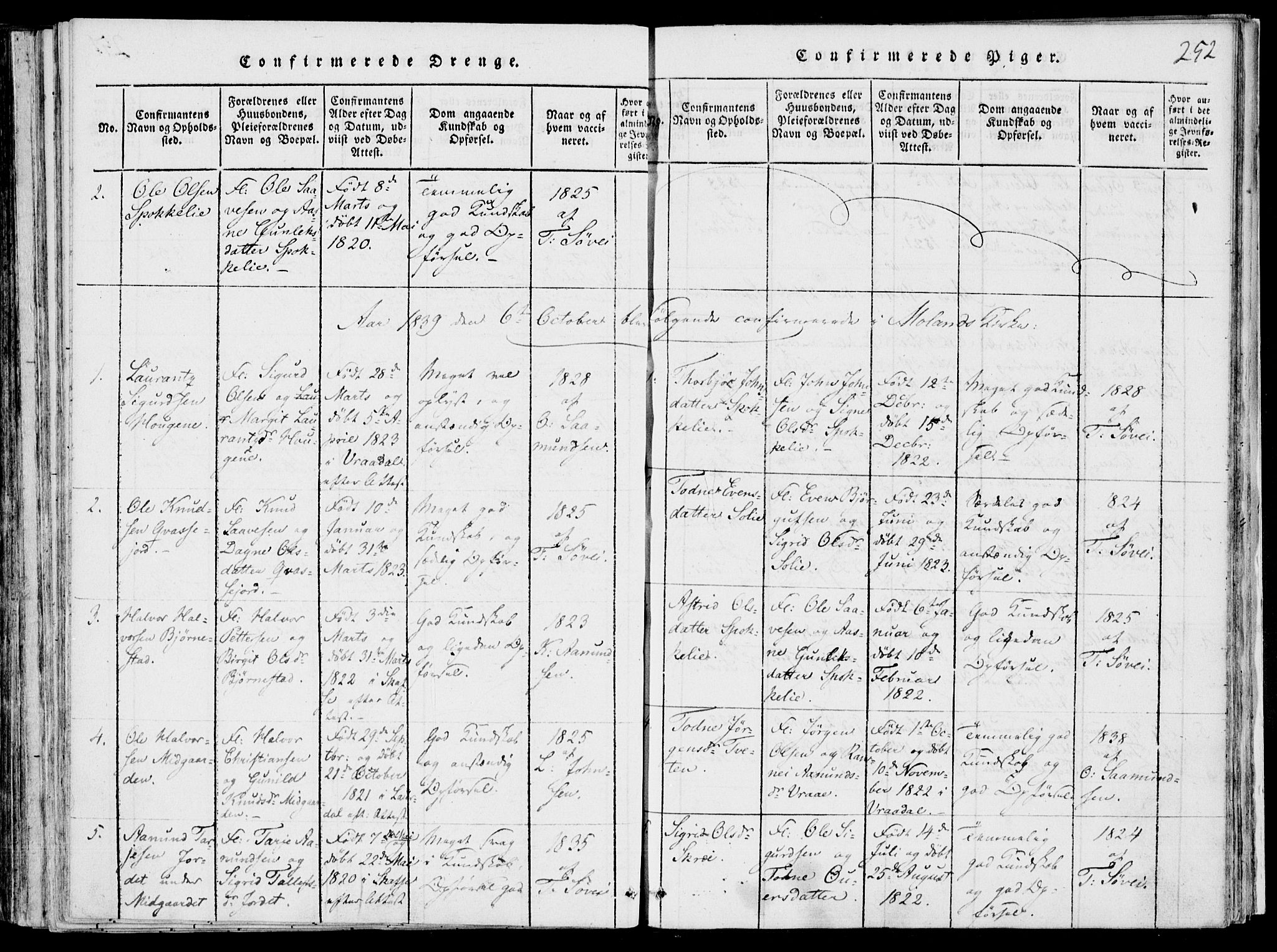 SAKO, Fyresdal kirkebøker, F/Fb/L0001: Ministerialbok nr. II 1, 1815-1854, s. 252