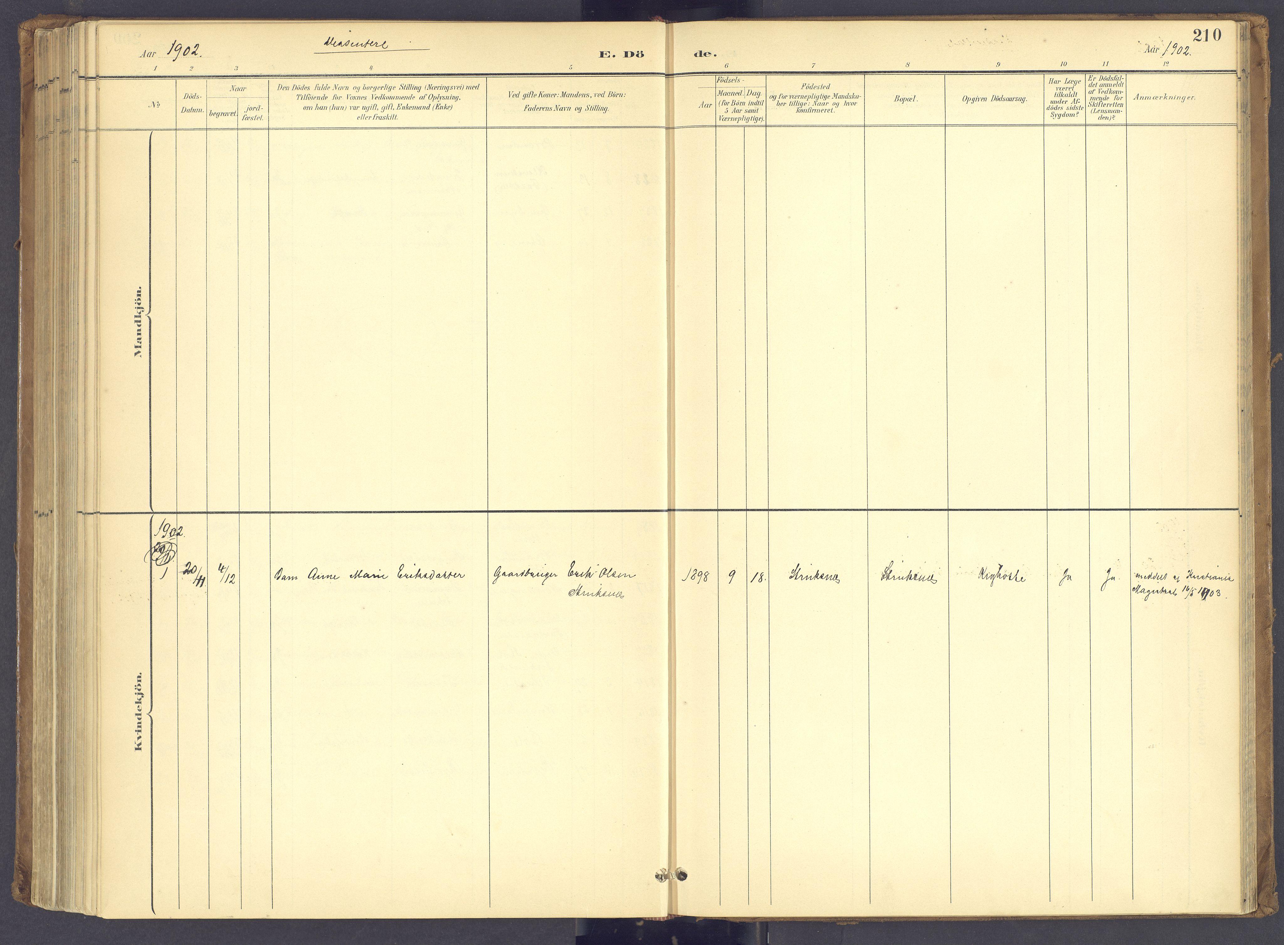 SAH, Søndre Land prestekontor, K/L0006: Ministerialbok nr. 6, 1895-1904, s. 210