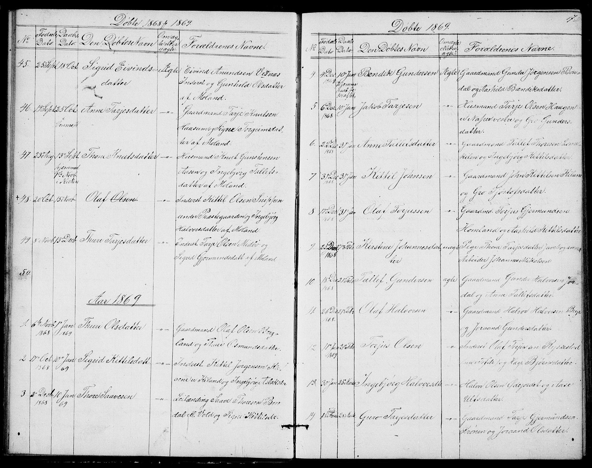 SAKO, Fyresdal kirkebøker, G/Ga/L0004: Klokkerbok nr. I 4, 1864-1892, s. 17