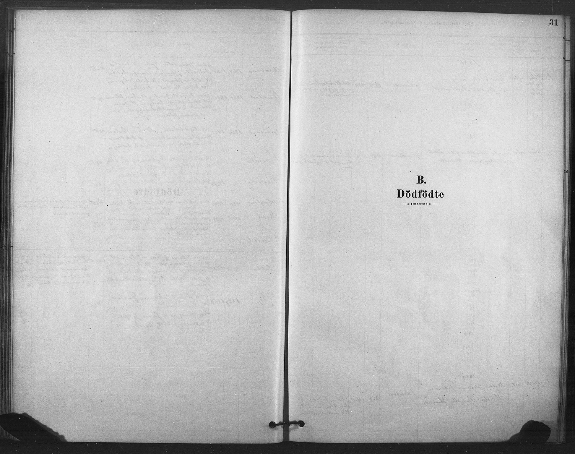SAT, Ministerialprotokoller, klokkerbøker og fødselsregistre - Nord-Trøndelag, 719/L0178: Ministerialbok nr. 719A01, 1878-1900, s. 31