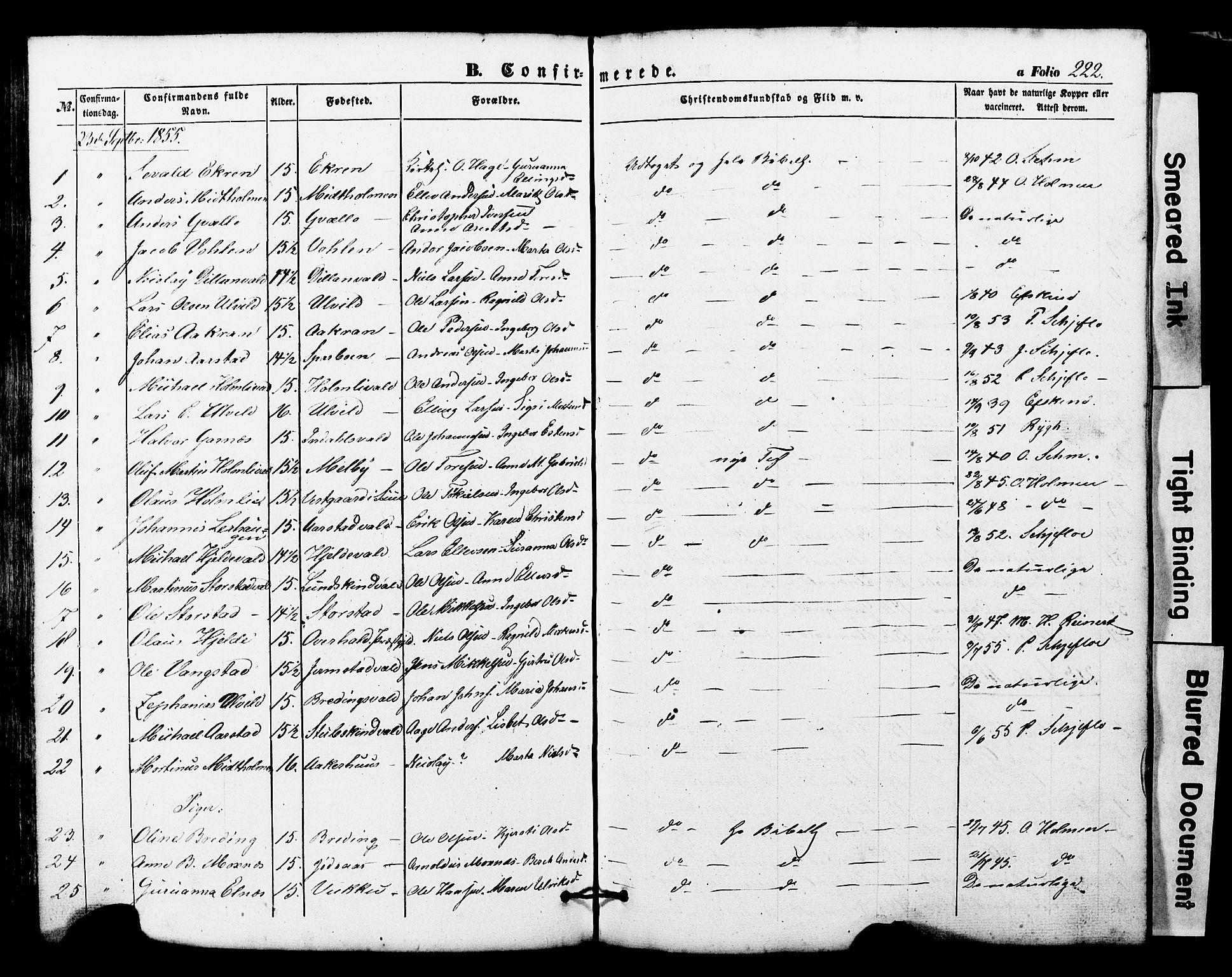 SAT, Ministerialprotokoller, klokkerbøker og fødselsregistre - Nord-Trøndelag, 724/L0268: Klokkerbok nr. 724C04, 1846-1878, s. 222