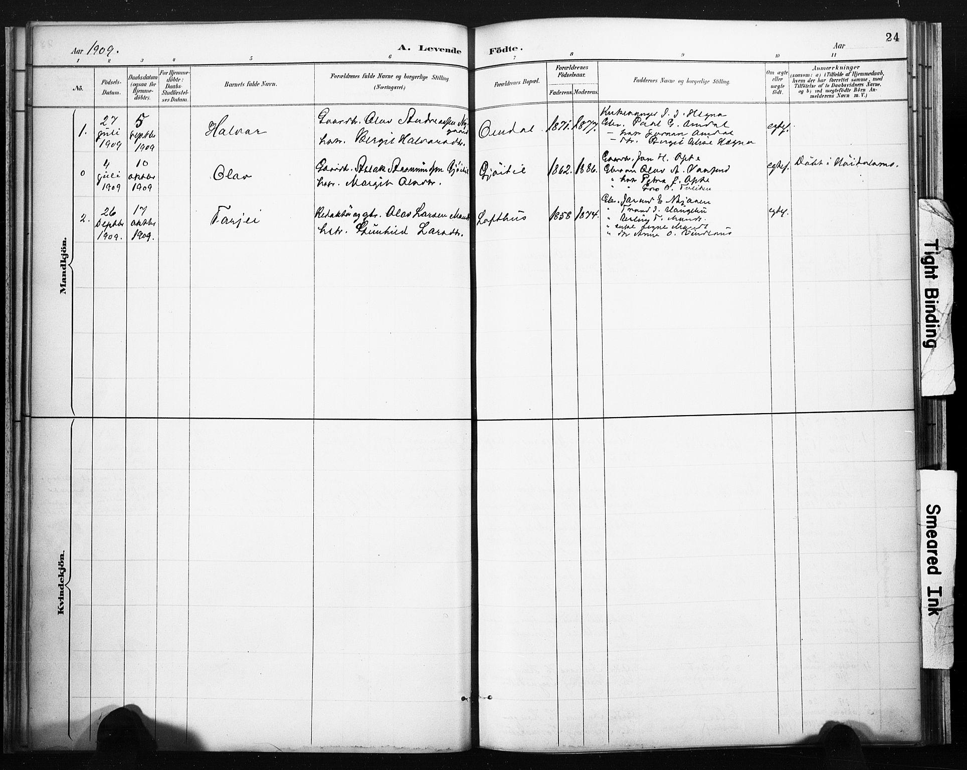 SAKO, Lårdal kirkebøker, F/Fb/L0002: Ministerialbok nr. II 2, 1887-1918, s. 24