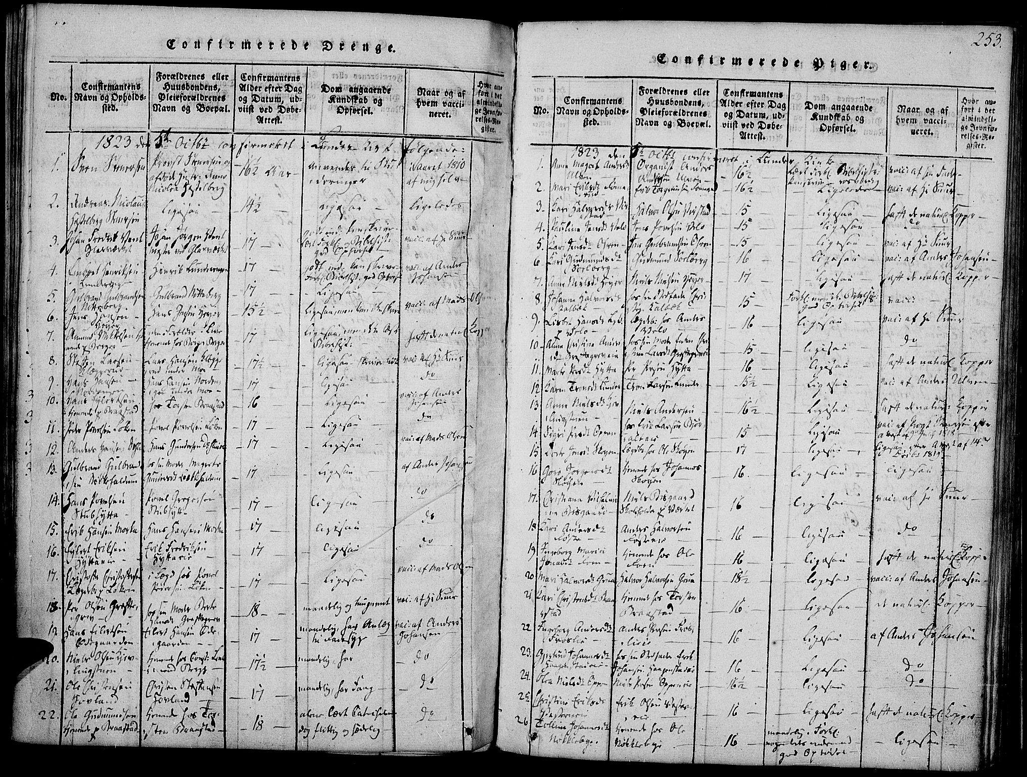 SAH, Jevnaker prestekontor, Ministerialbok nr. 5, 1815-1837, s. 253