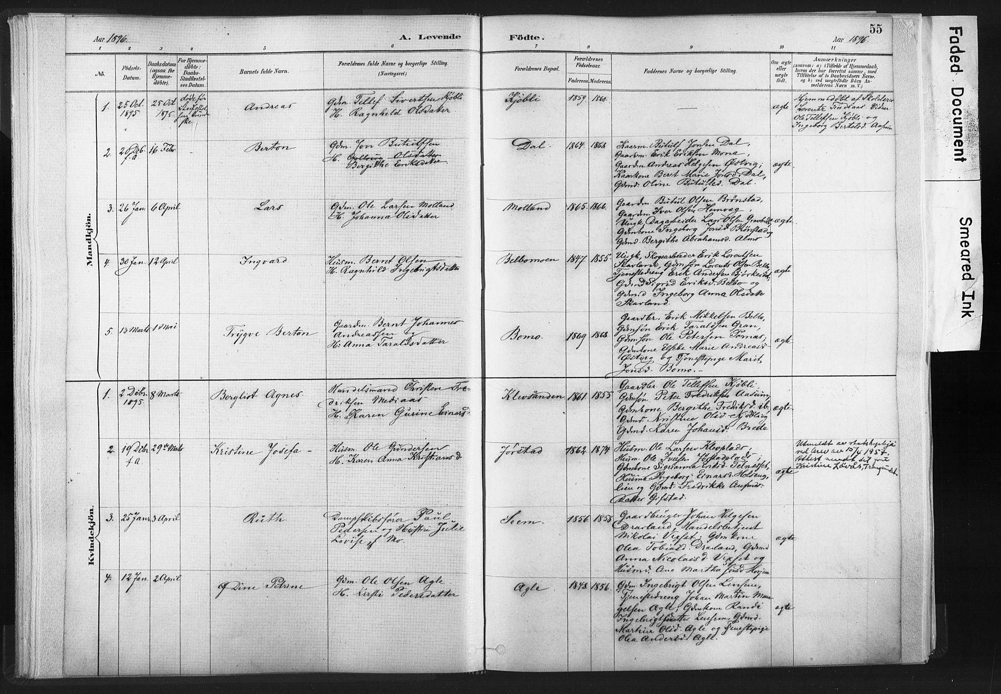 SAT, Ministerialprotokoller, klokkerbøker og fødselsregistre - Nord-Trøndelag, 749/L0474: Ministerialbok nr. 749A08, 1887-1903, s. 55