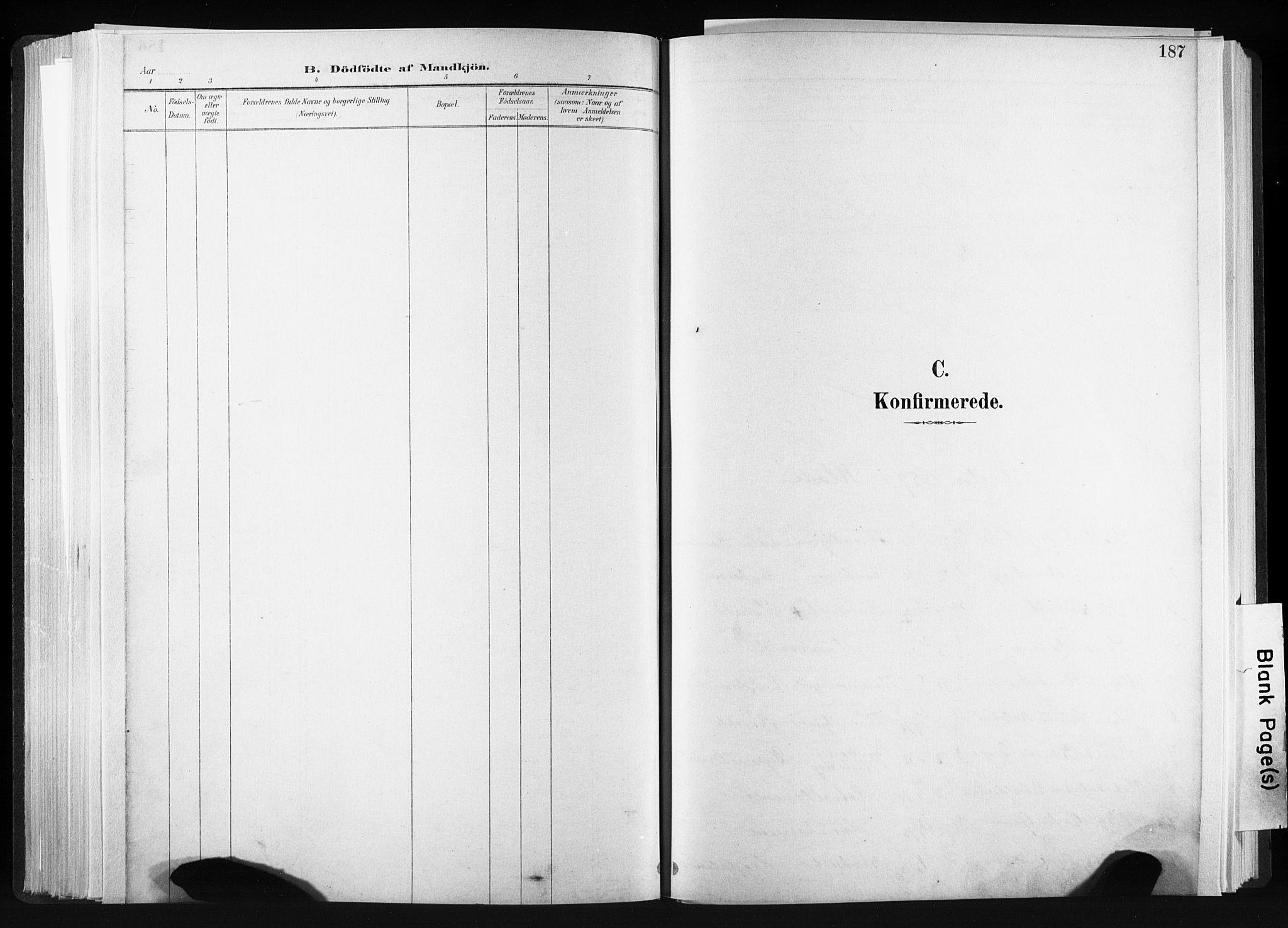 SAT, Ministerialprotokoller, klokkerbøker og fødselsregistre - Sør-Trøndelag, 606/L0300: Ministerialbok nr. 606A15, 1886-1893, s. 187