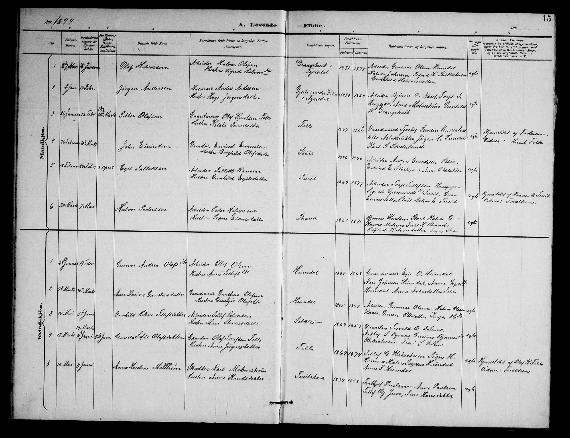 SAKO, Nissedal kirkebøker, G/Gb/L0003: Klokkerbok nr. II 3, 1893-1928, s. 15