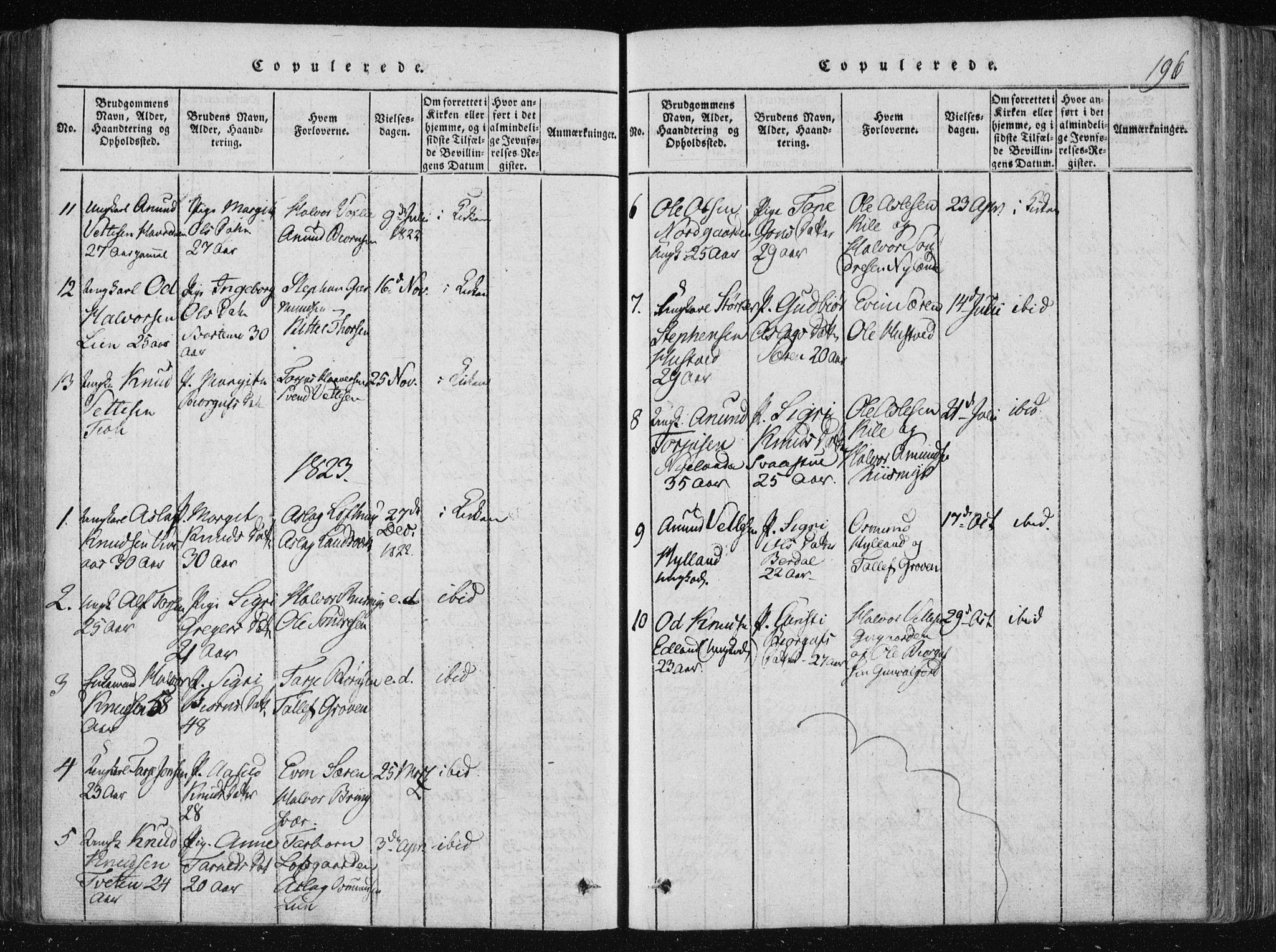SAKO, Vinje kirkebøker, F/Fa/L0003: Ministerialbok nr. I 3, 1814-1843, s. 196