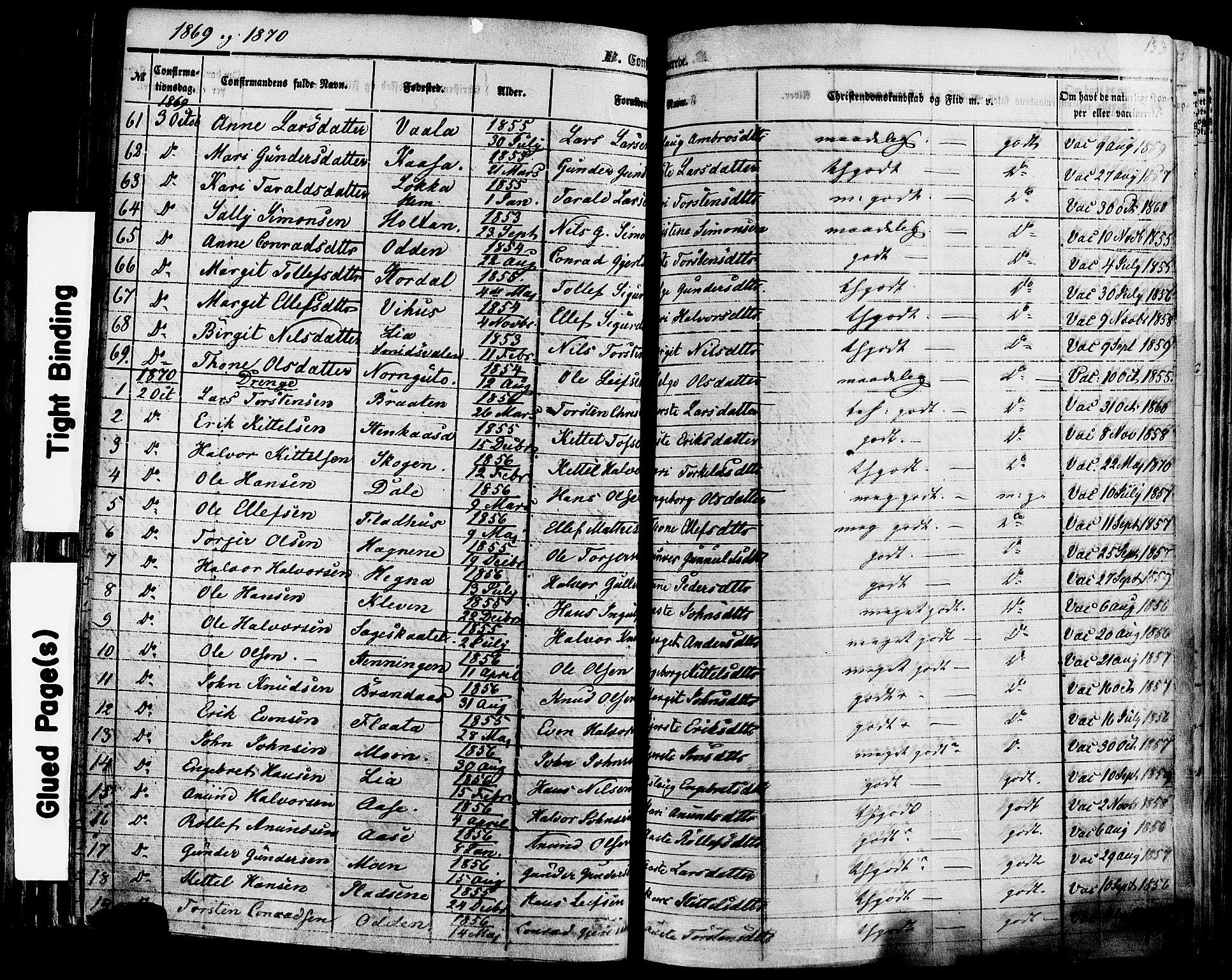 SAKO, Sauherad kirkebøker, F/Fa/L0007: Ministerialbok nr. I 7, 1851-1873, s. 133