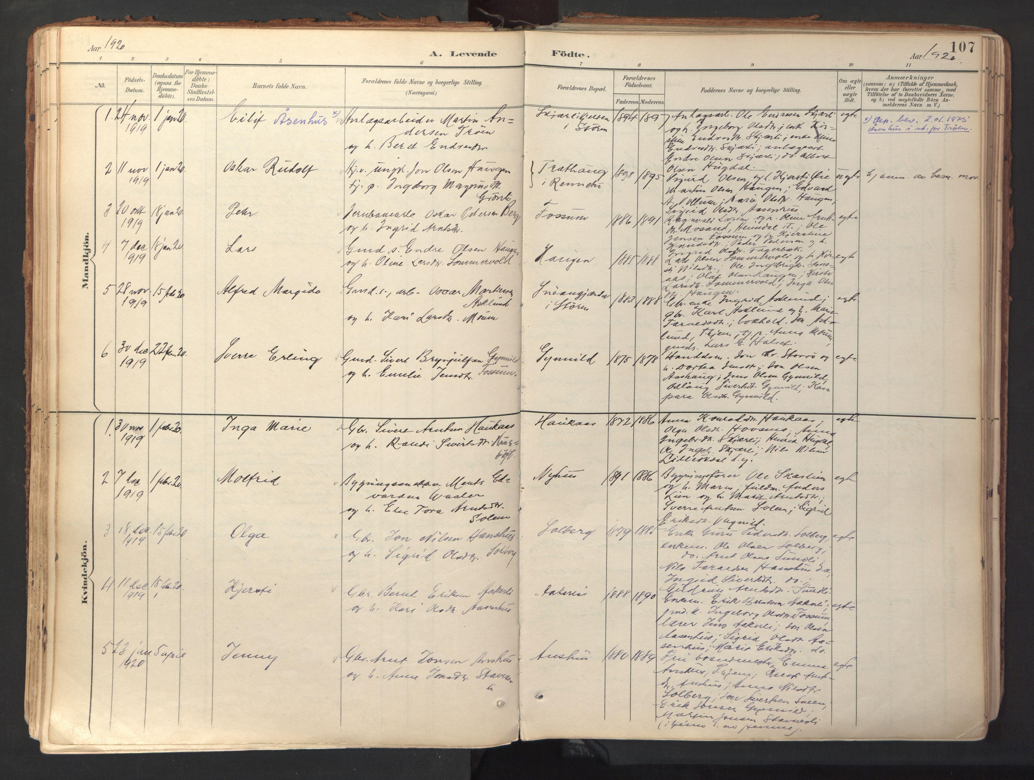 SAT, Ministerialprotokoller, klokkerbøker og fødselsregistre - Sør-Trøndelag, 689/L1041: Ministerialbok nr. 689A06, 1891-1923, s. 107