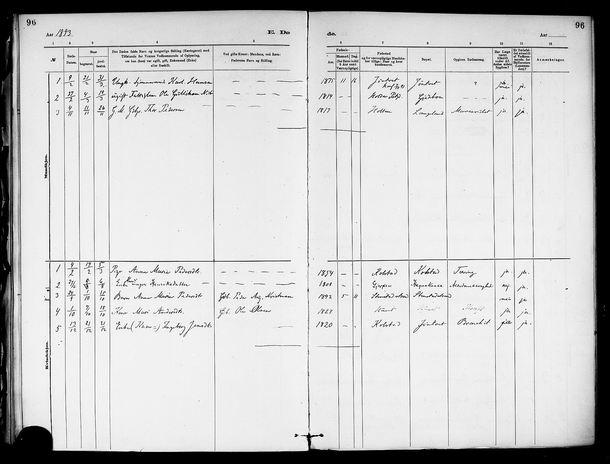 SAKO, Holla kirkebøker, F/Fa/L0009: Ministerialbok nr. 9, 1881-1897, s. 96