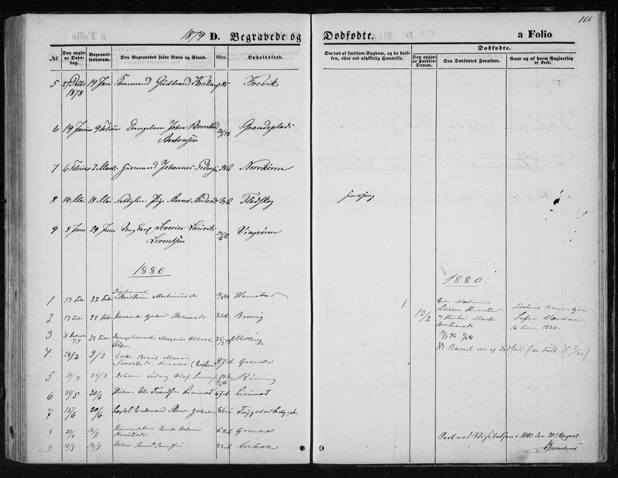 SAT, Ministerialprotokoller, klokkerbøker og fødselsregistre - Nord-Trøndelag, 733/L0324: Ministerialbok nr. 733A03, 1870-1883, s. 166