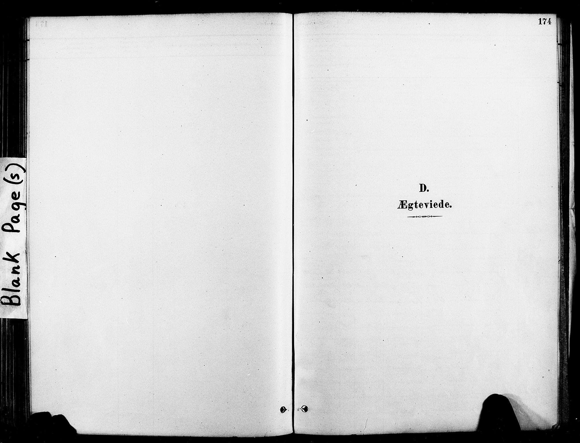 SAT, Ministerialprotokoller, klokkerbøker og fødselsregistre - Nord-Trøndelag, 709/L0077: Ministerialbok nr. 709A17, 1880-1895, s. 174