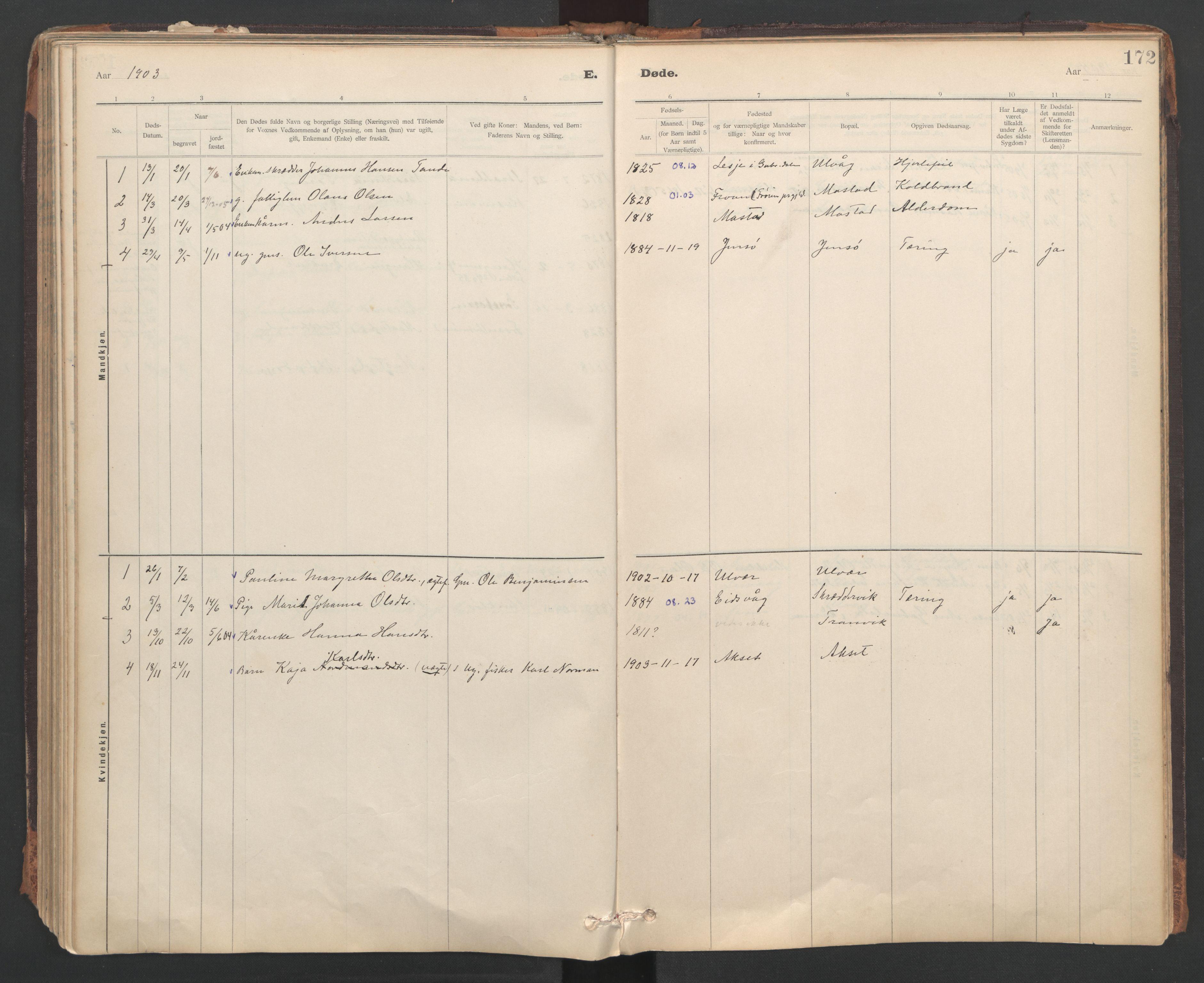 SAT, Ministerialprotokoller, klokkerbøker og fødselsregistre - Sør-Trøndelag, 637/L0559: Ministerialbok nr. 637A02, 1899-1923, s. 172
