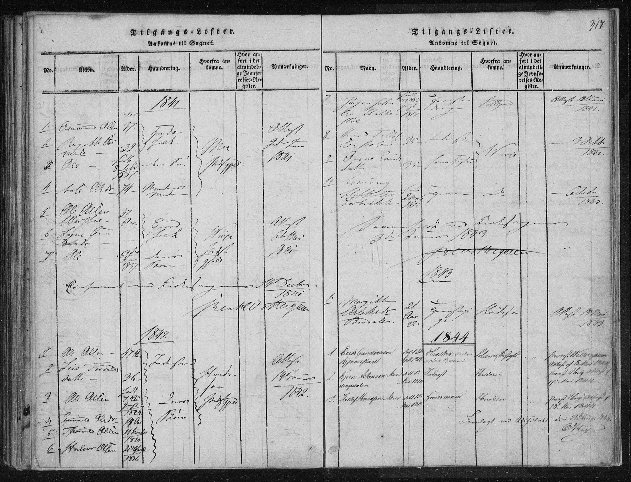 SAKO, Lårdal kirkebøker, F/Fc/L0001: Ministerialbok nr. III 1, 1815-1860, s. 317
