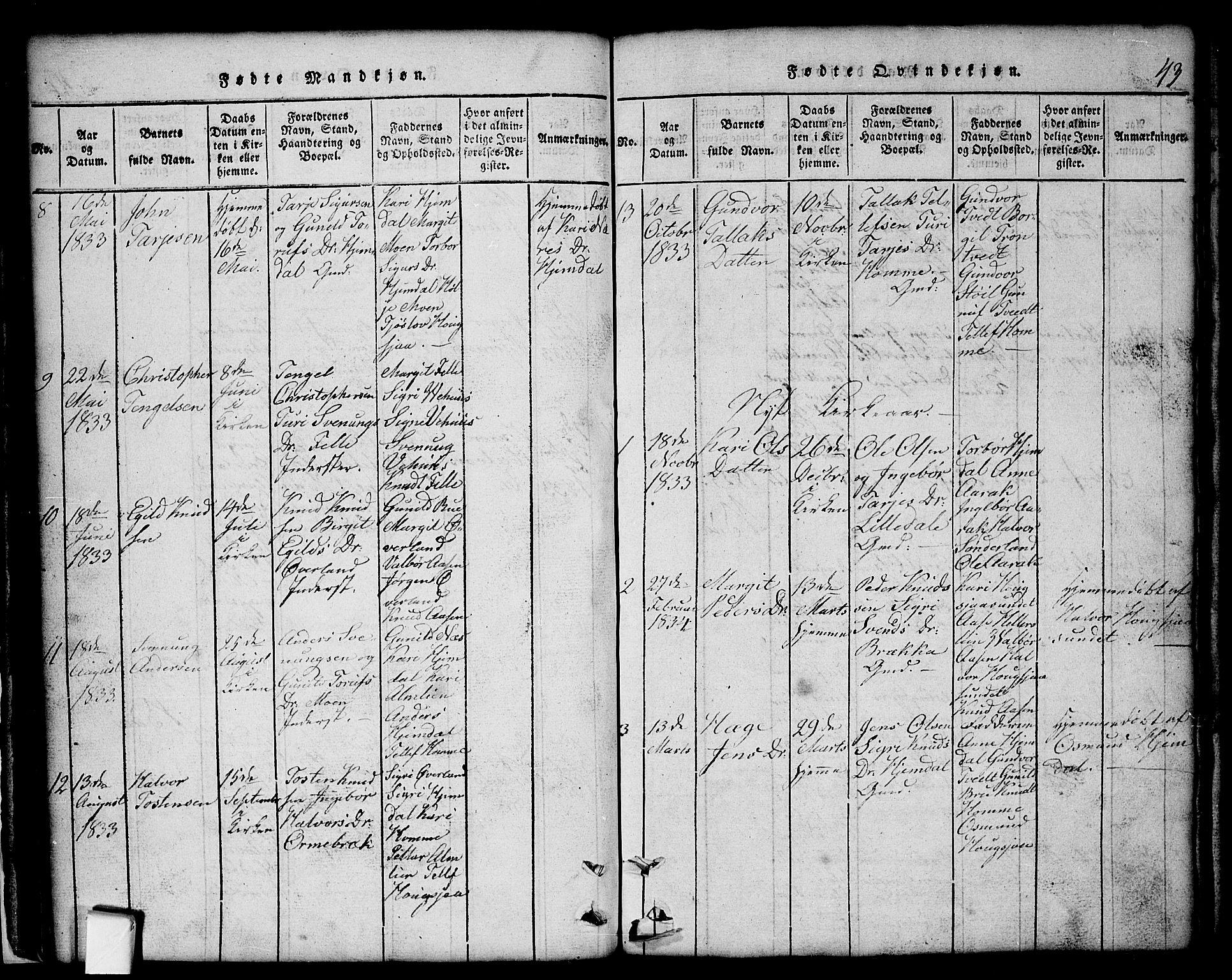 SAKO, Nissedal kirkebøker, G/Gb/L0001: Klokkerbok nr. II 1, 1814-1862, s. 43