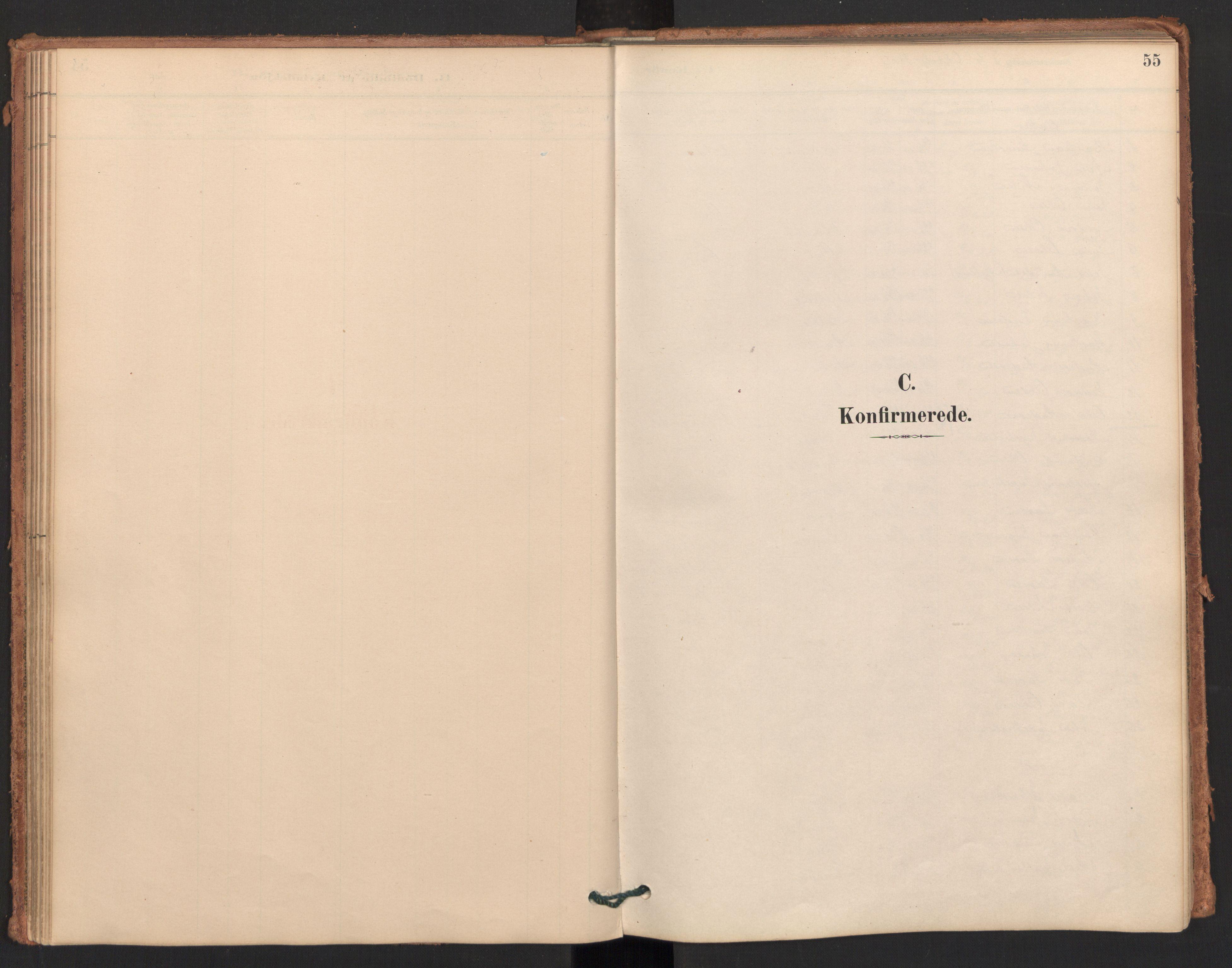 SAT, Ministerialprotokoller, klokkerbøker og fødselsregistre - Møre og Romsdal, 596/L1056: Ministerialbok nr. 596A01, 1885-1900, s. 55