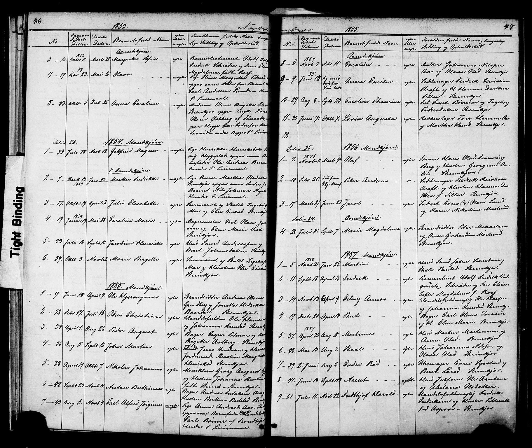 SAT, Ministerialprotokoller, klokkerbøker og fødselsregistre - Nord-Trøndelag, 739/L0367: Ministerialbok nr. 739A01 /2, 1838-1868, s. 46-47