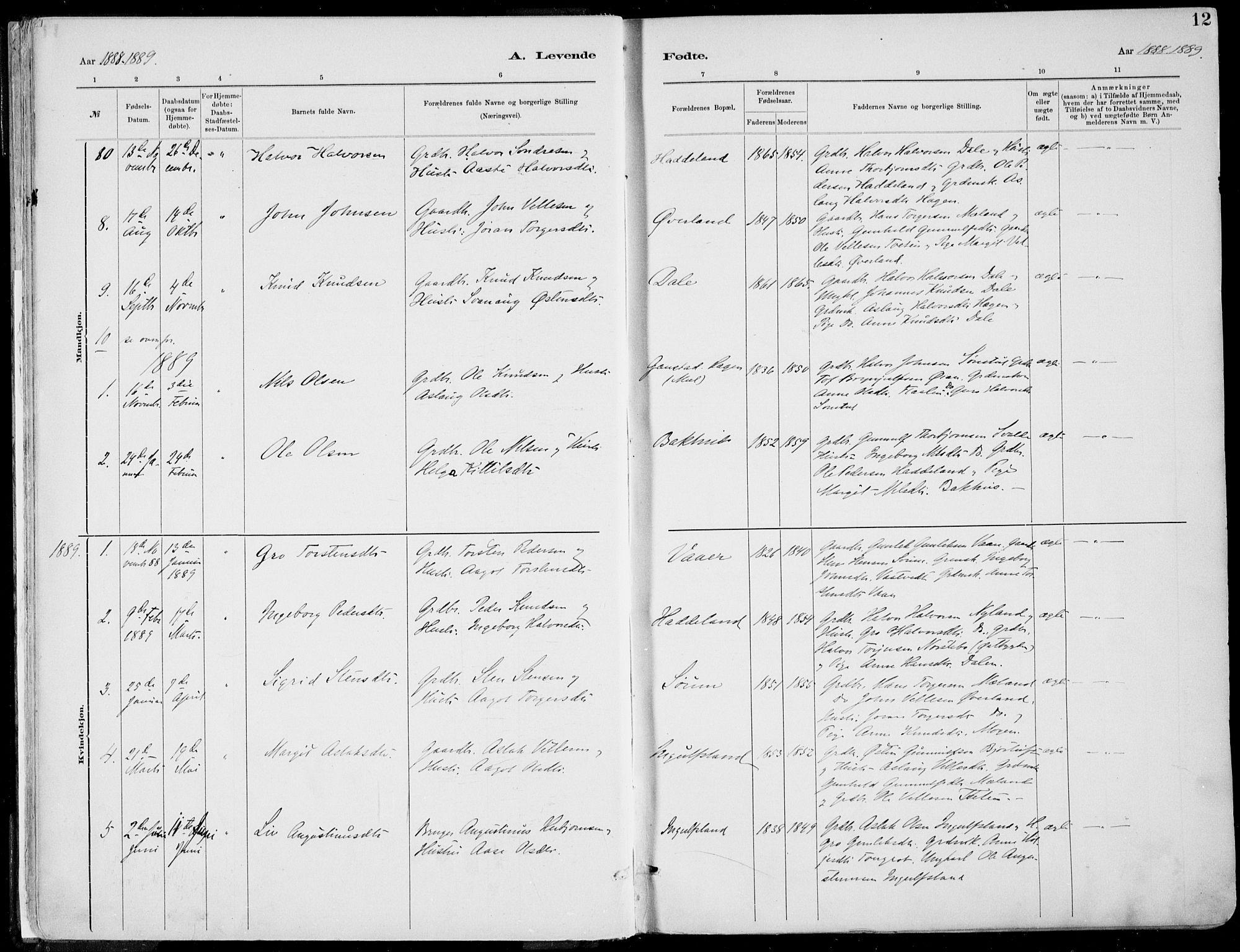 SAKO, Rjukan kirkebøker, F/Fa/L0001: Ministerialbok nr. 1, 1878-1912, s. 12