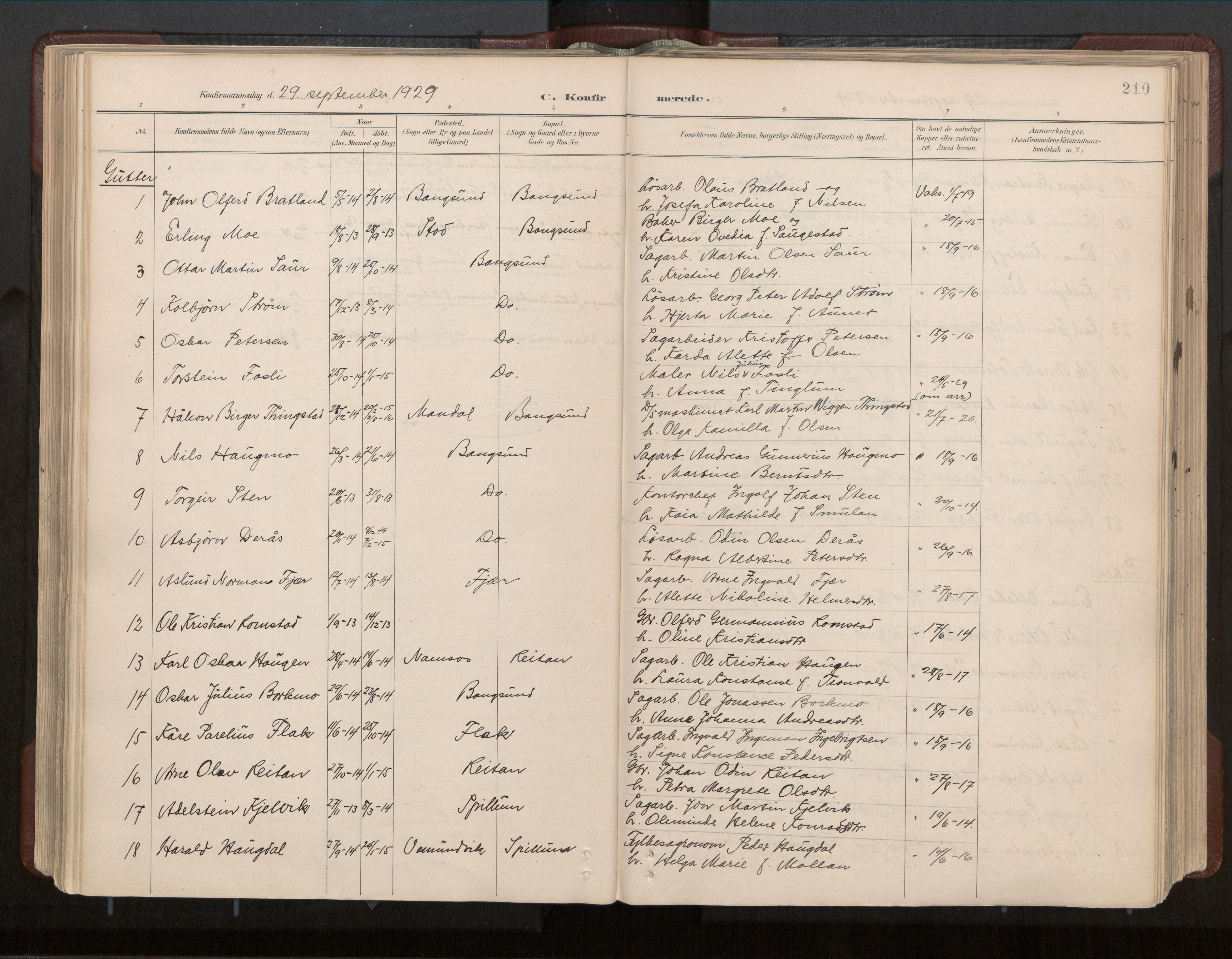 SAT, Ministerialprotokoller, klokkerbøker og fødselsregistre - Nord-Trøndelag, 770/L0589: Ministerialbok nr. 770A03, 1887-1929, s. 210