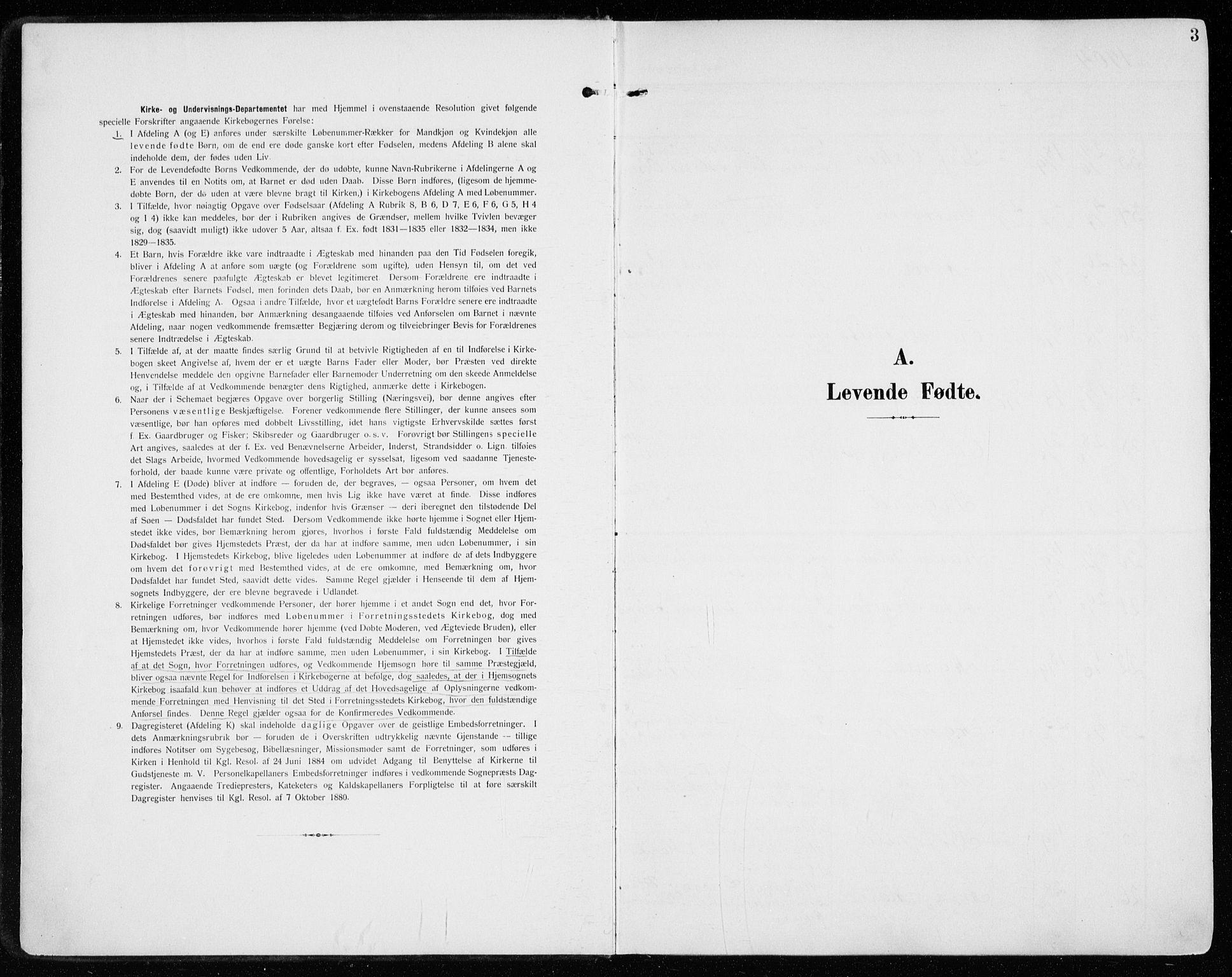 SAH, Vardal prestekontor, H/Ha/Haa/L0016: Ministerialbok nr. 16, 1904-1916, s. 3