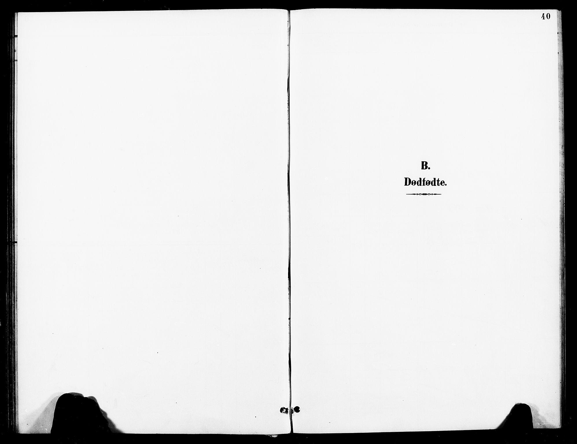 SAT, Ministerialprotokoller, klokkerbøker og fødselsregistre - Nord-Trøndelag, 740/L0379: Ministerialbok nr. 740A02, 1895-1907, s. 40