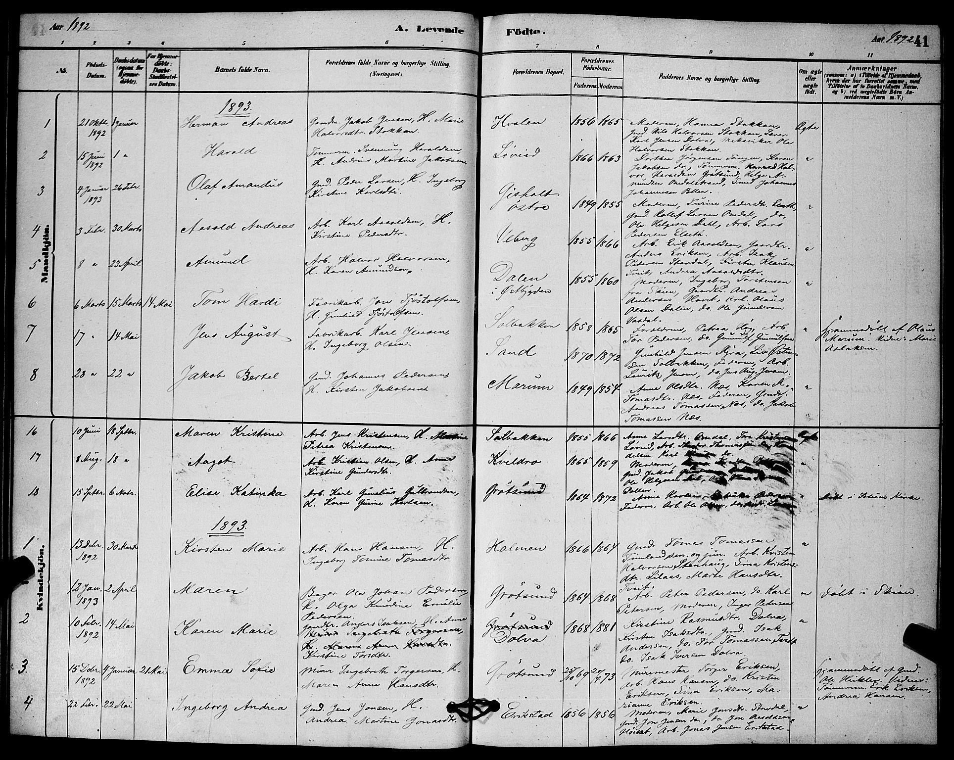 SAKO, Solum kirkebøker, G/Gb/L0003: Klokkerbok nr. II 3, 1880-1898, s. 41