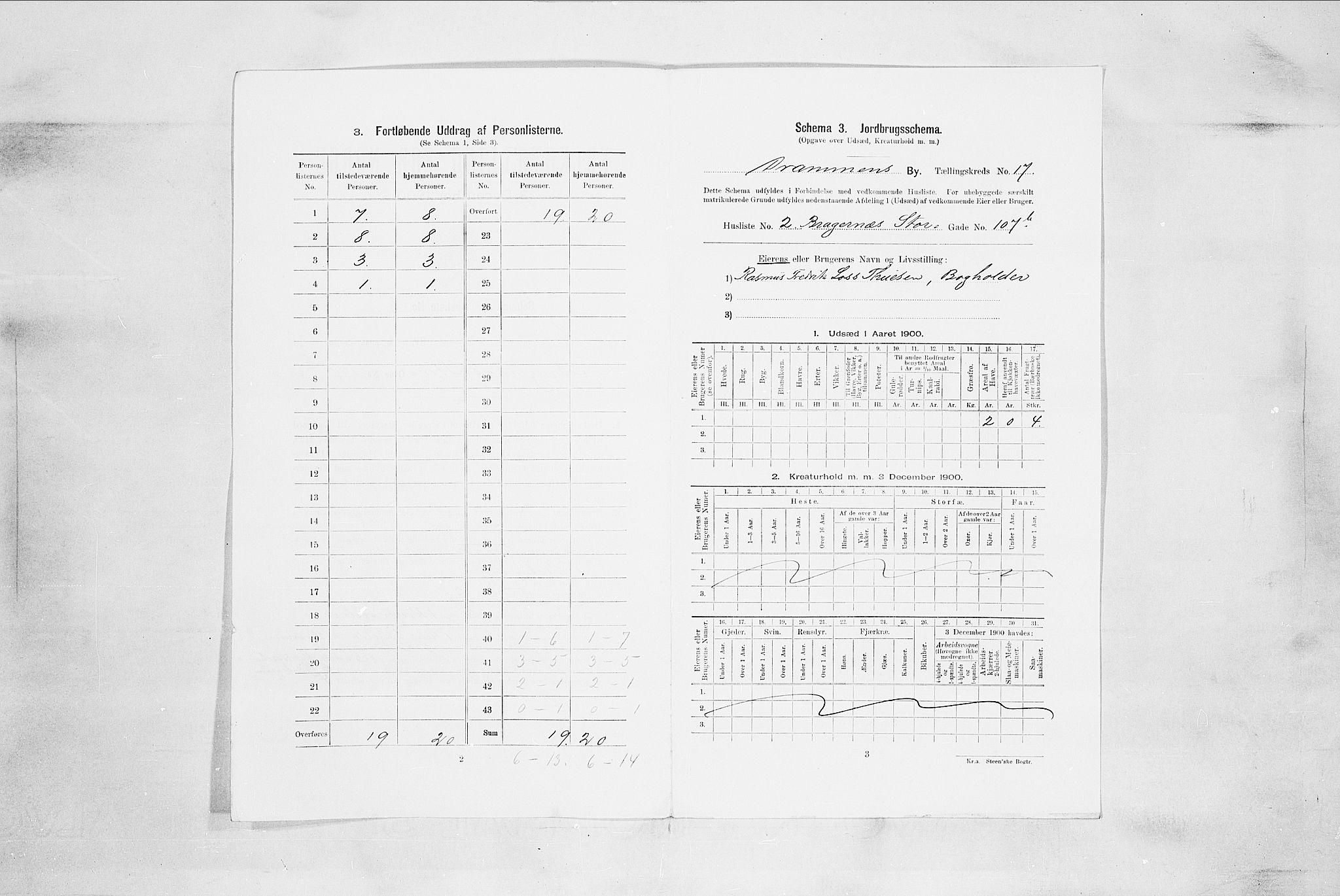 RA, Folketelling 1900 for 0602 Drammen kjøpstad, 1900, s. 3100