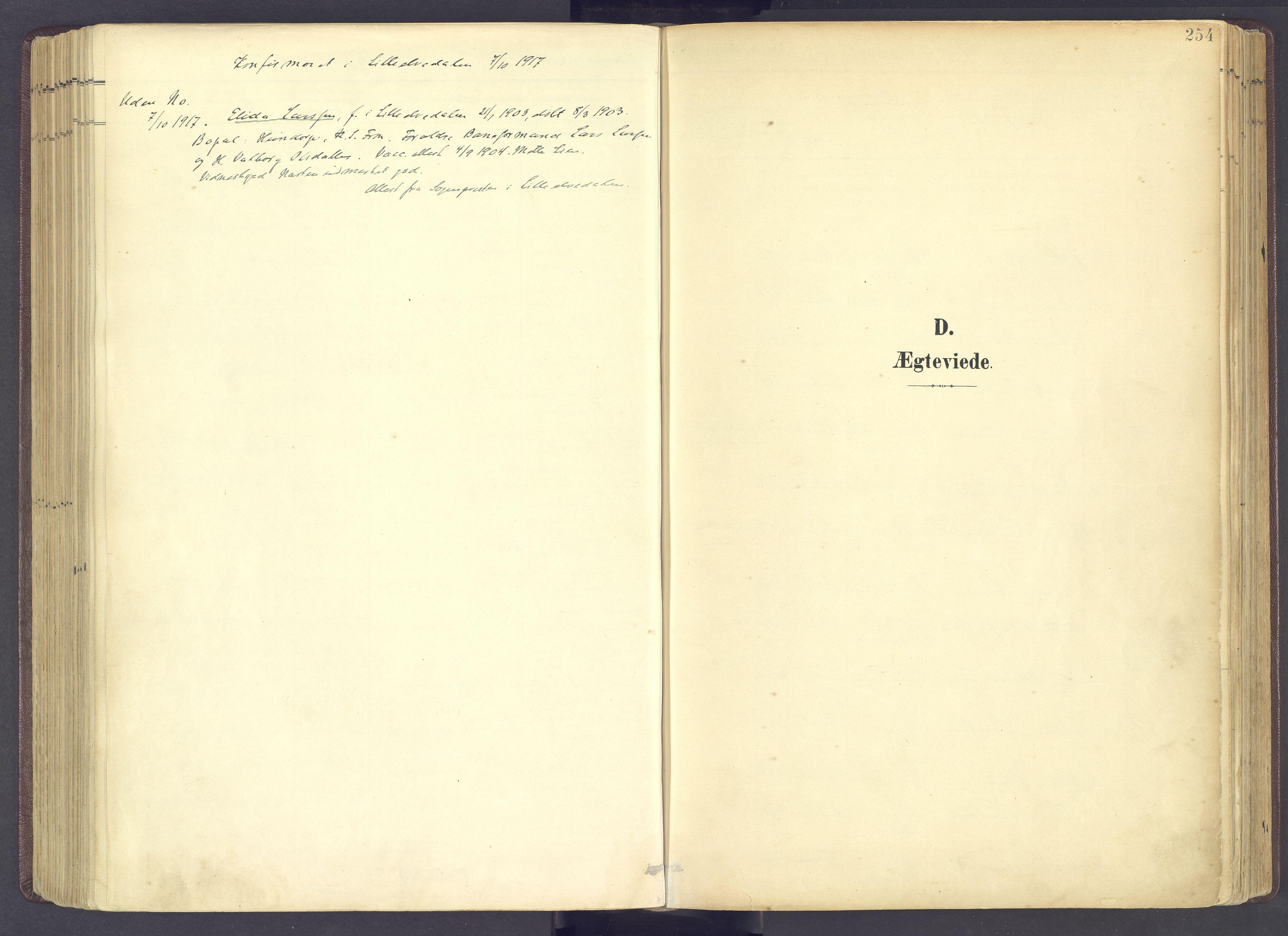 SAH, Sør-Fron prestekontor, H/Ha/Haa/L0004: Ministerialbok nr. 4, 1898-1919, s. 254